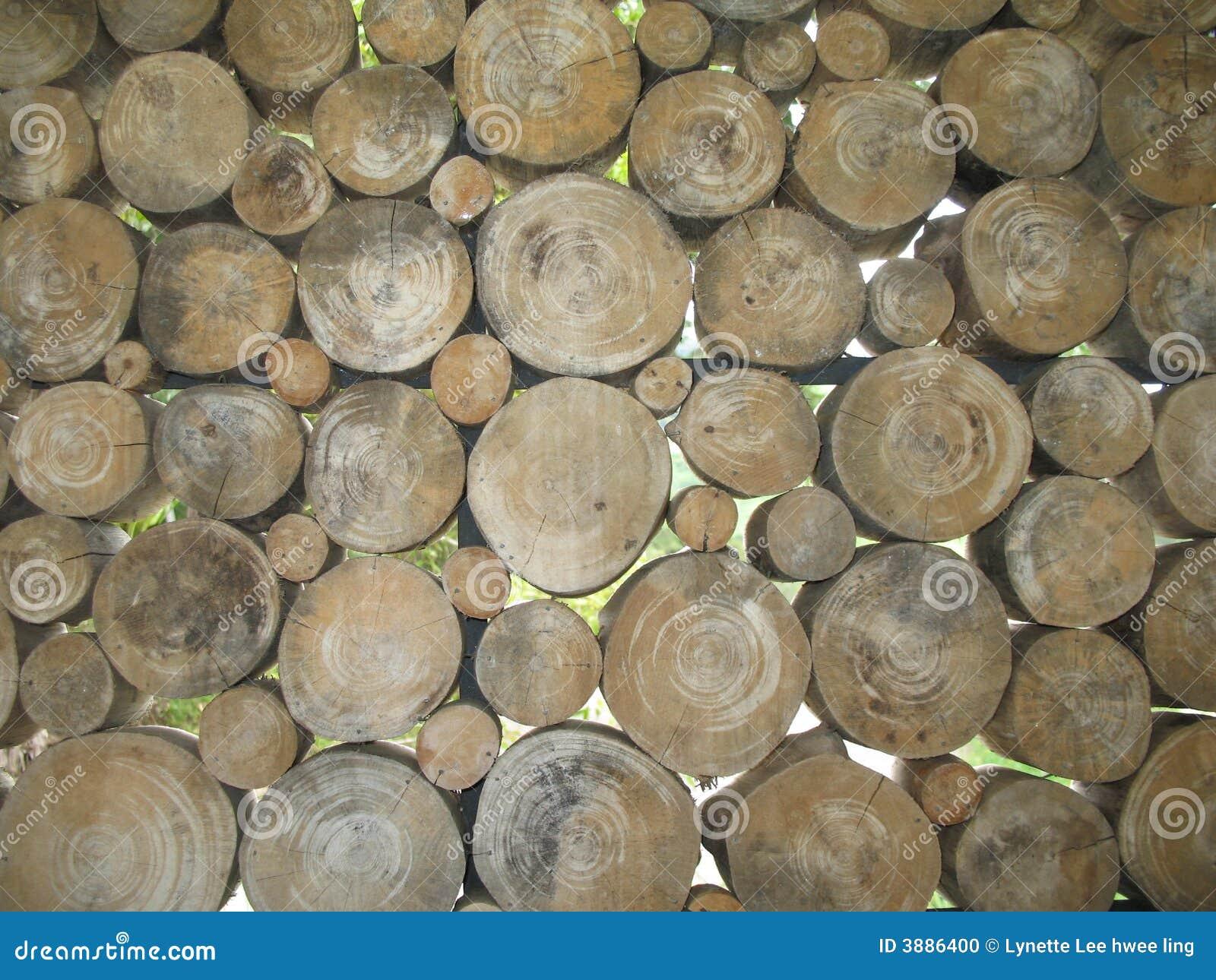 Een muur van verschillende met maat bomenbesnoeiing.