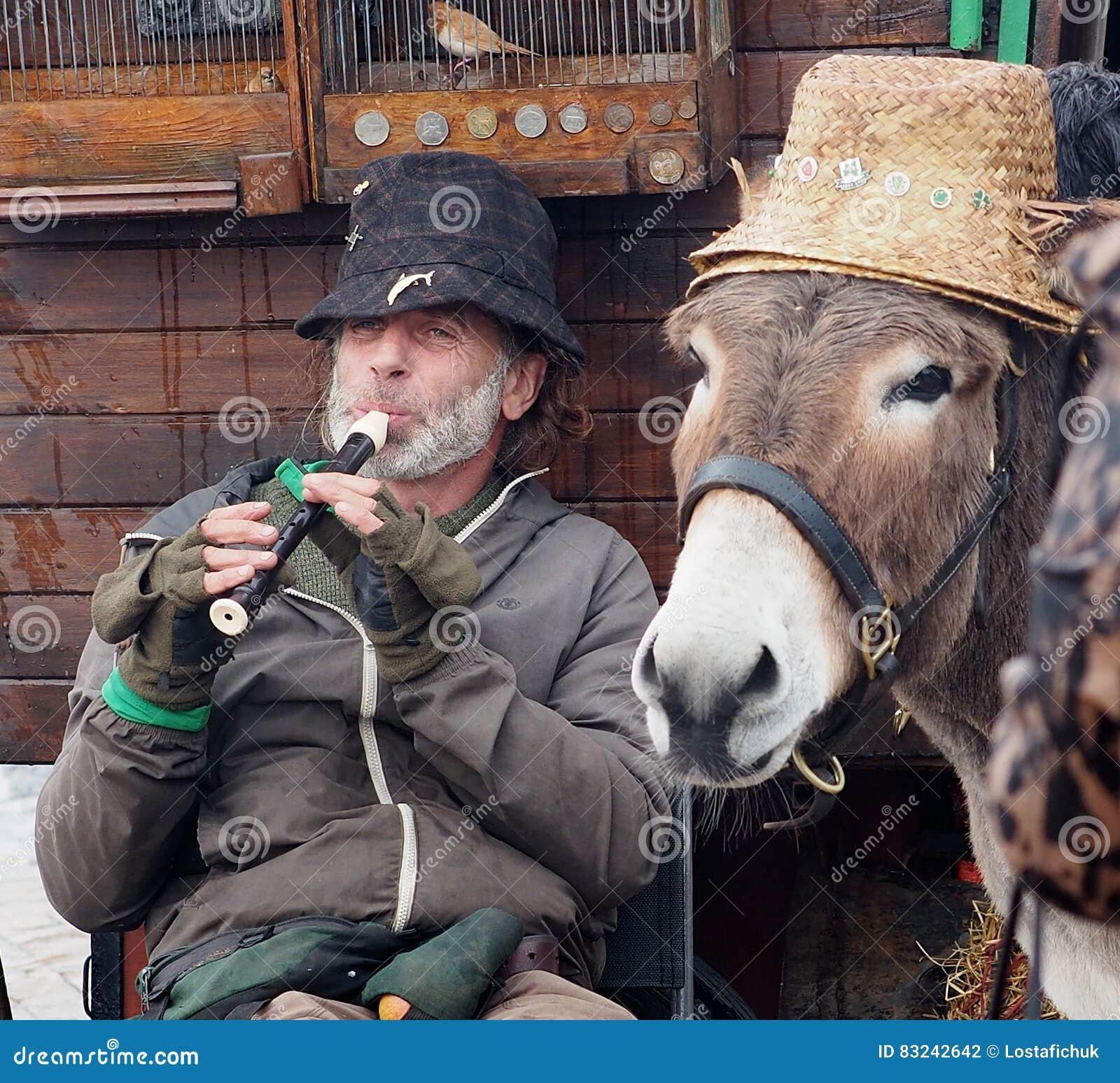 Muzyk Z osłem W Dingle Irlandia