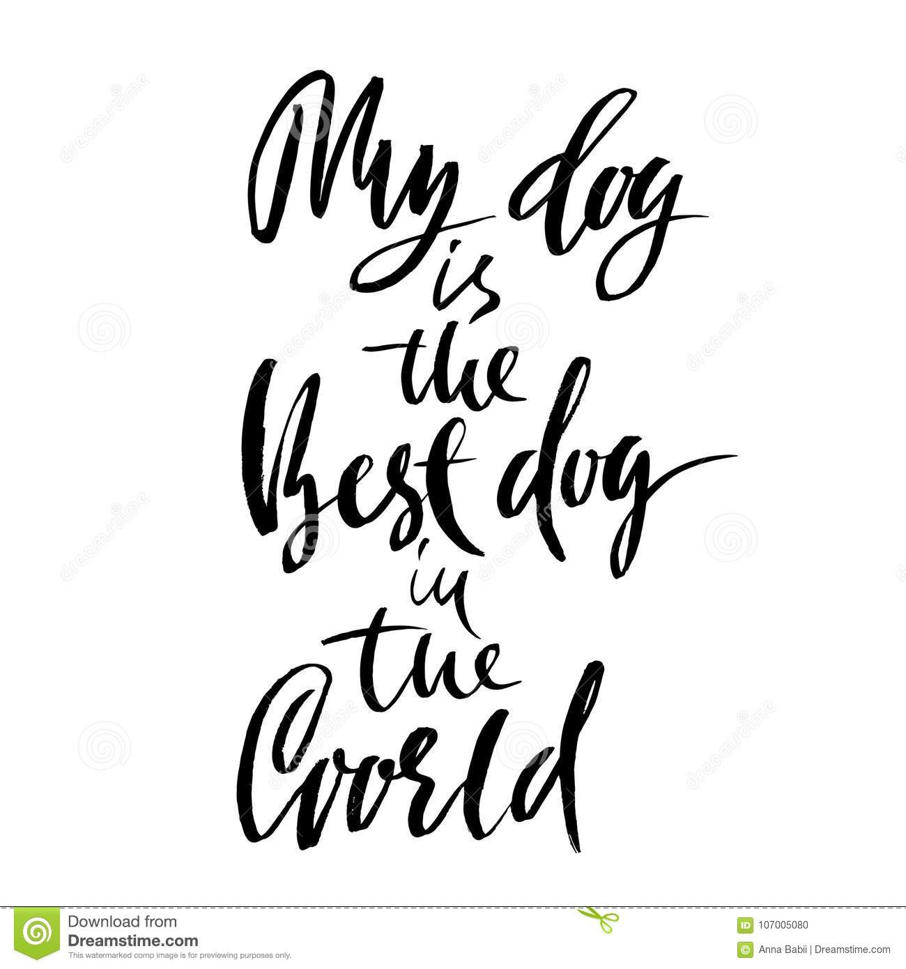 My dog is the best dog in the world hand drawn dry brush lettering