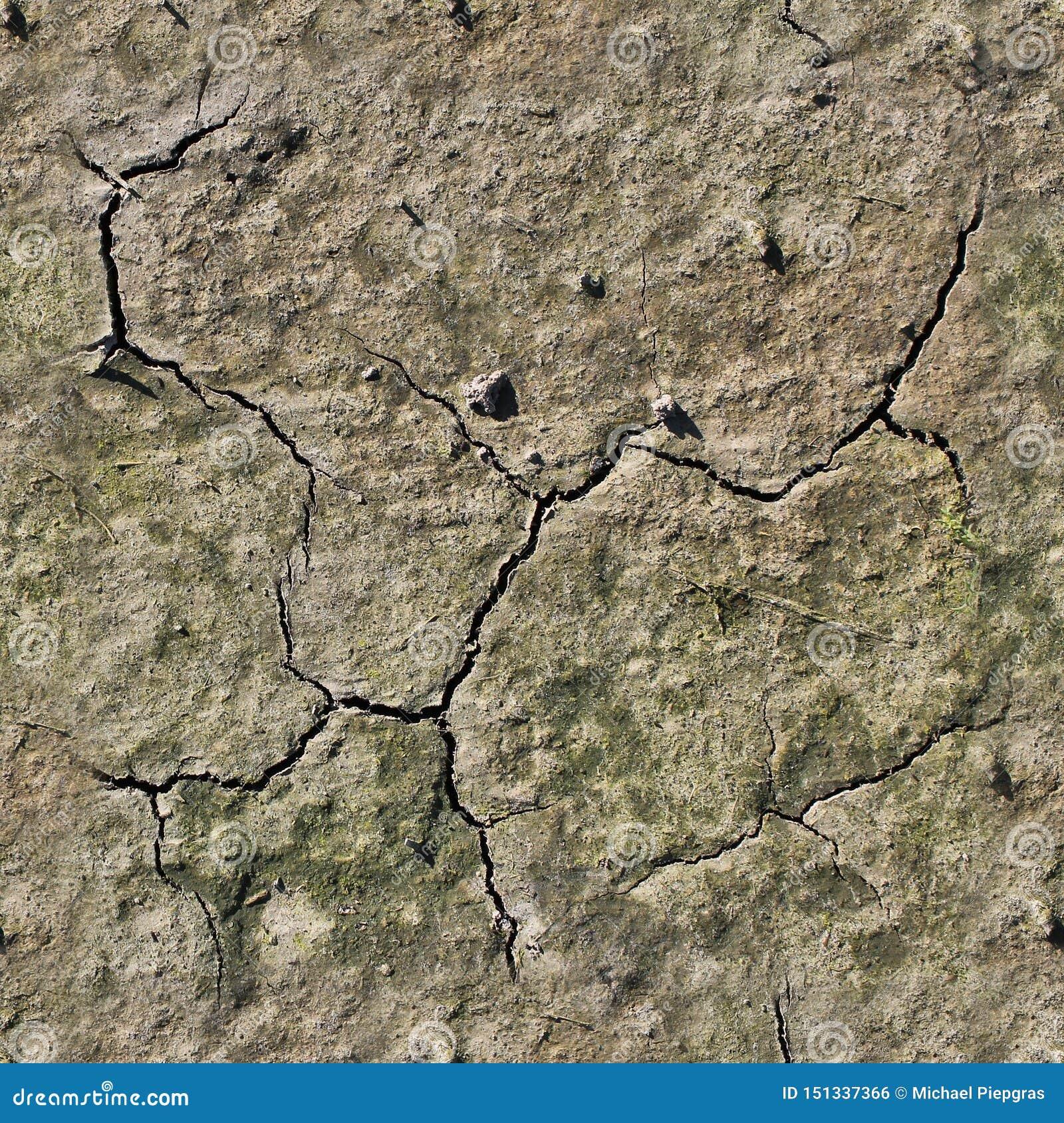 Mycket detaljerad sömlös texturmodell av tunnlandjordning och smuts i hög upplösning