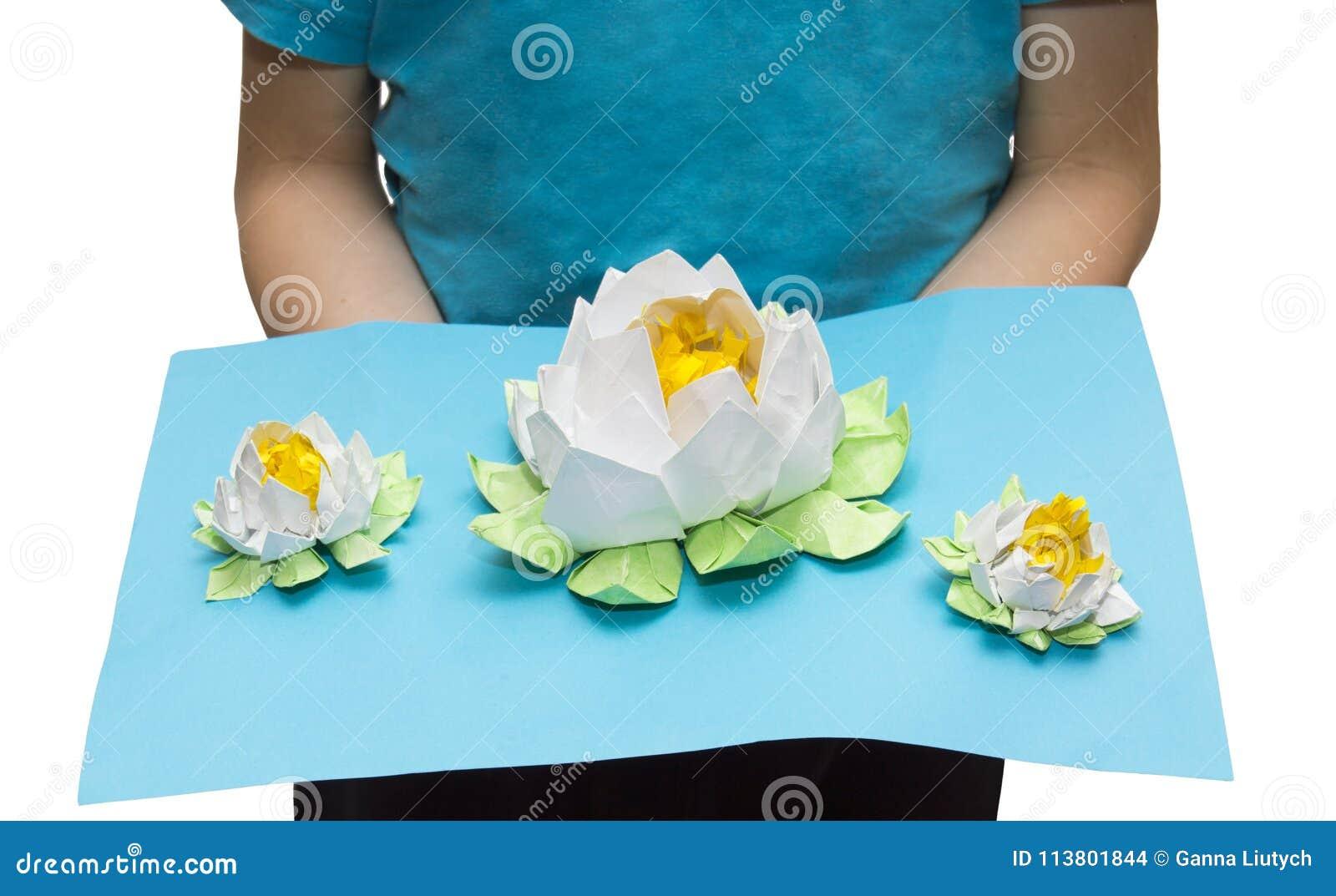Mycket härlig origami: tre vita lotusblommor på sjön