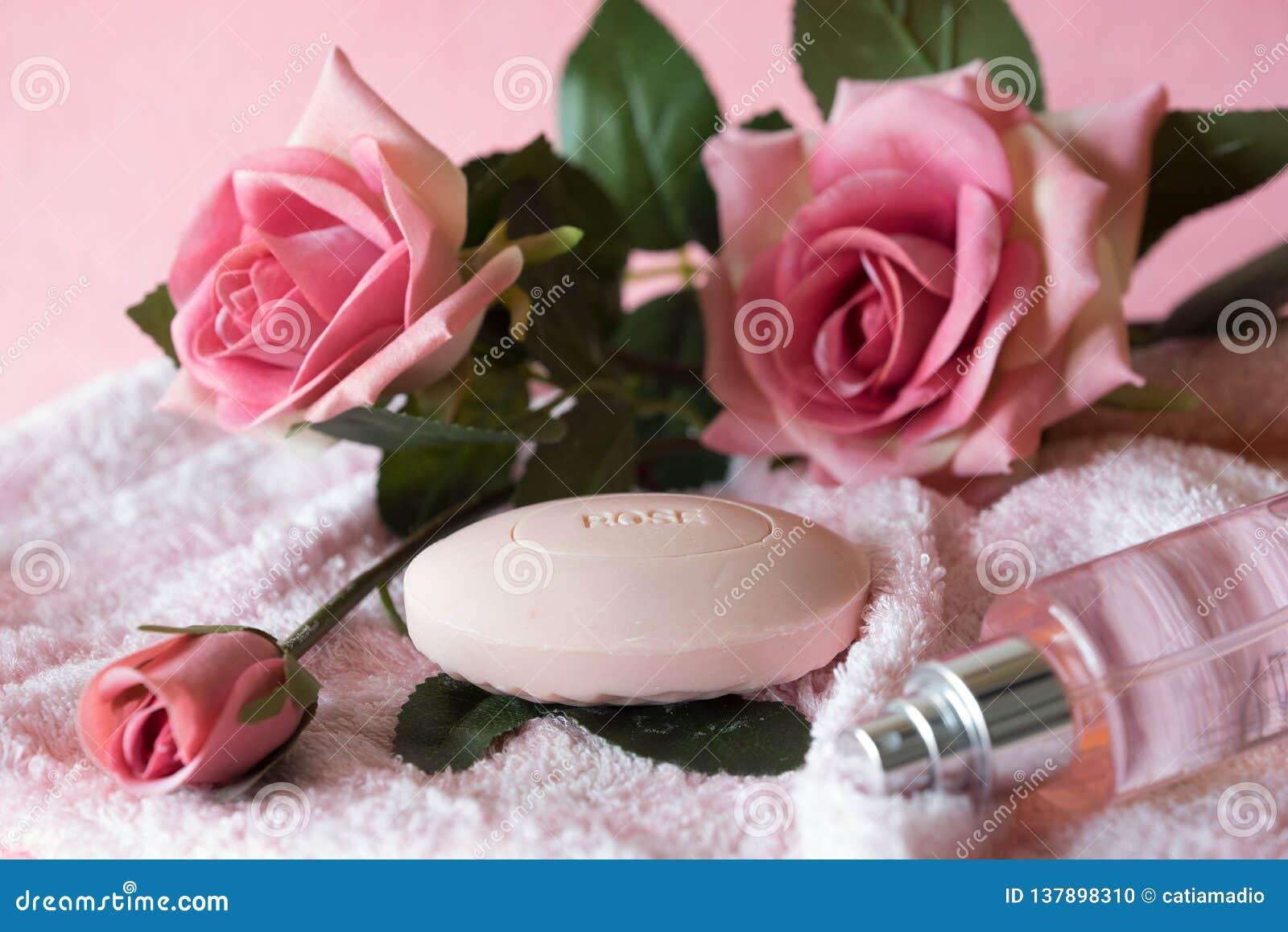 Mydła i róż menchii tło