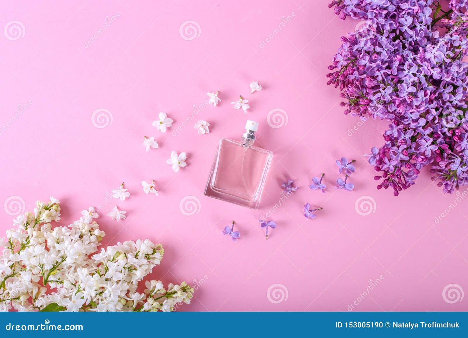 Mydlarnia i kwiecisty perfumowania poj?cie Вottle pachnidło w centre z llilac kwitnie na różowym tle Kreatywnie modny mieszkanie