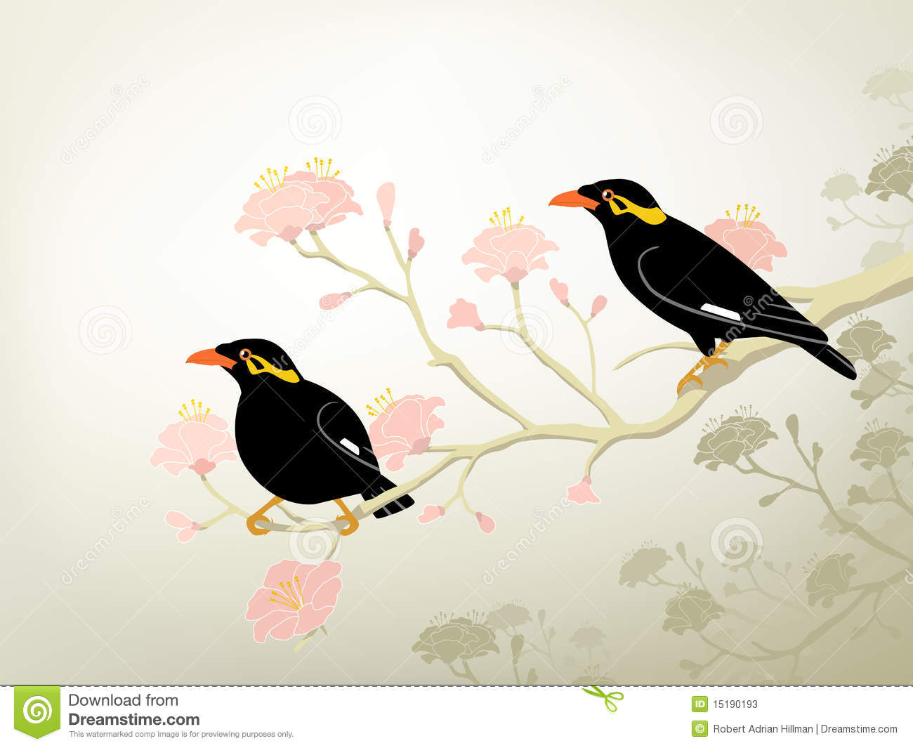 Myna Cartoons, Illustrations & Vector Stock Images - 28 ... - photo#26