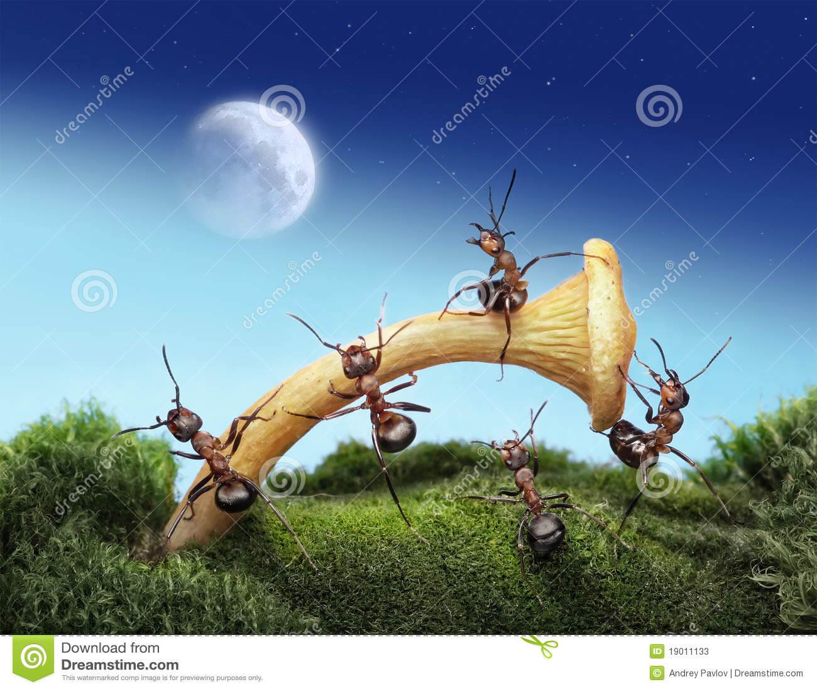 Myralanseringar moon spacemanlaget till