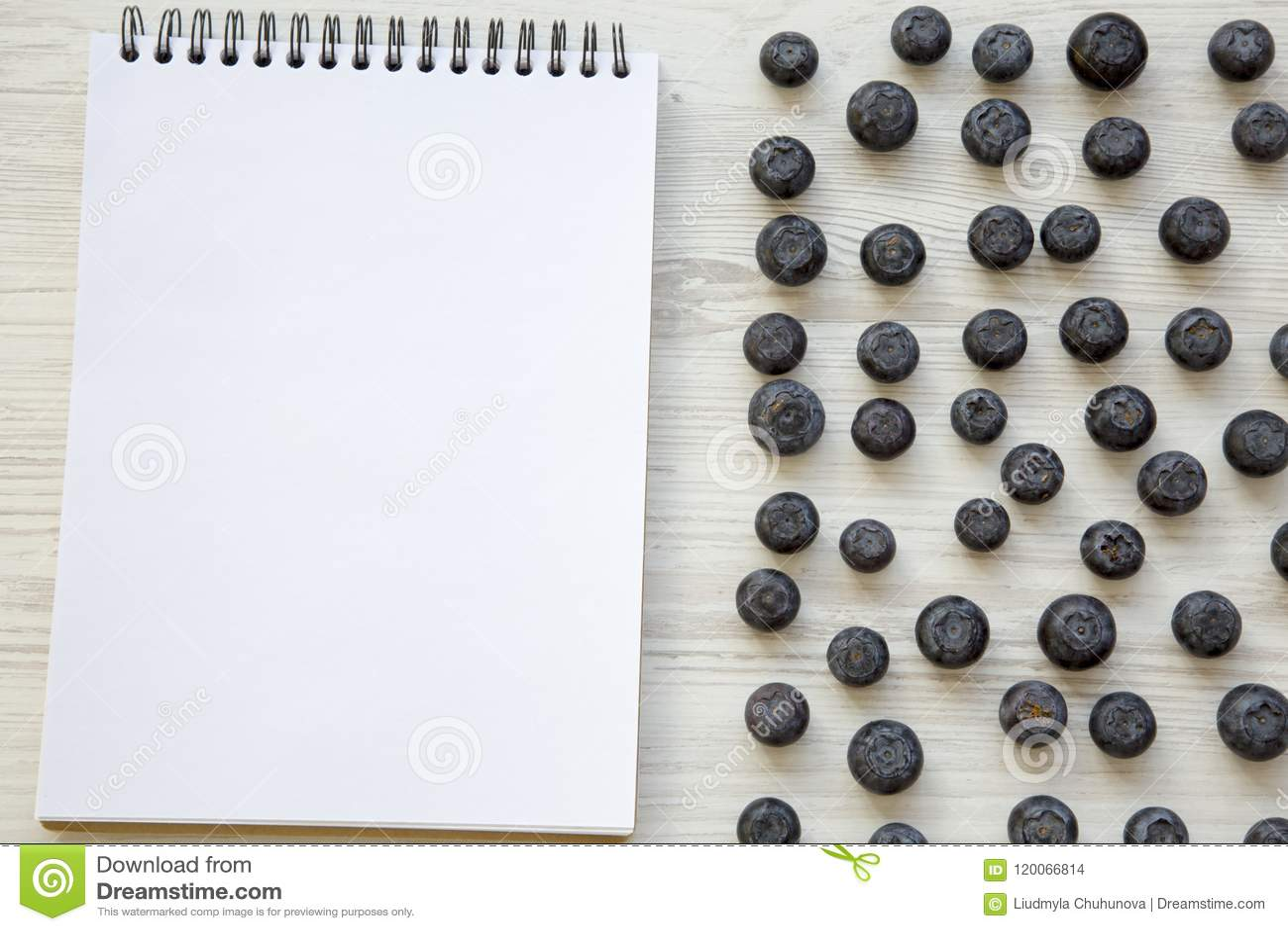 Myrtilles dans une cuvette bleue, vue supérieure Myrtille fraîche sur la surface en bois blanche