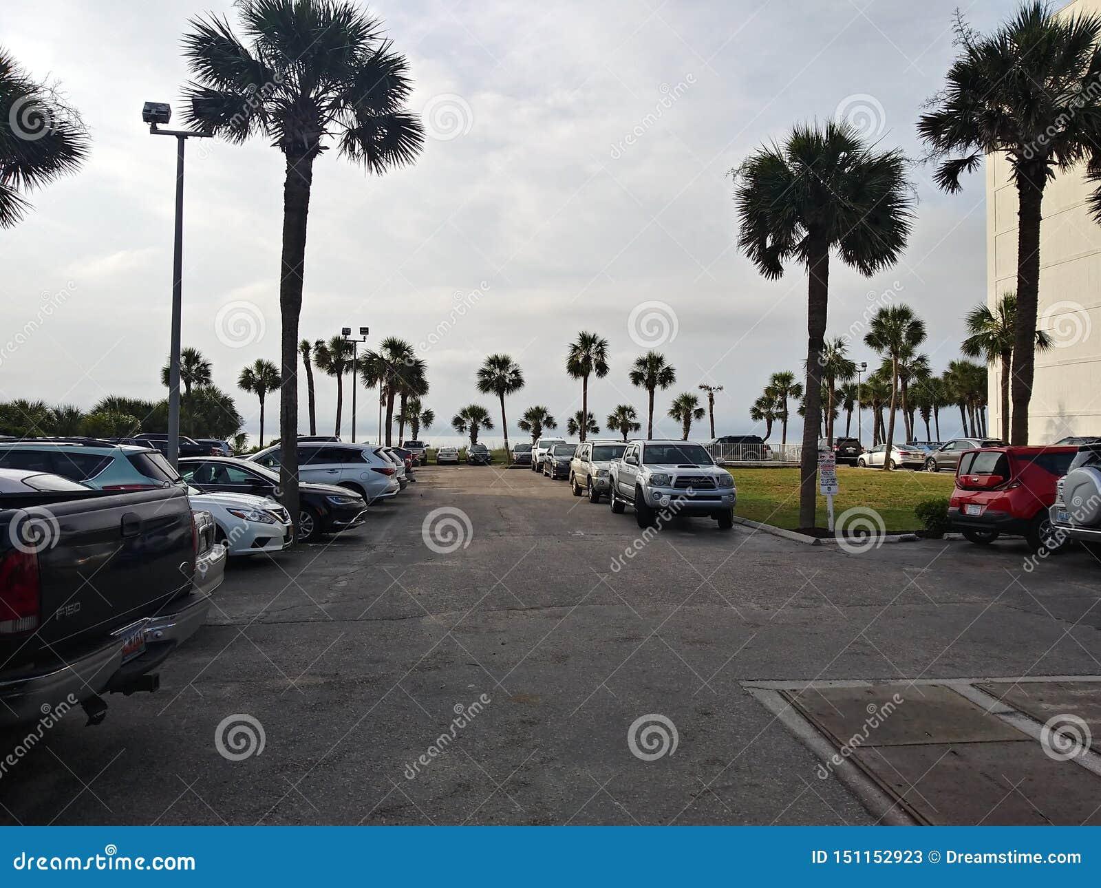 Myrtle παραλία