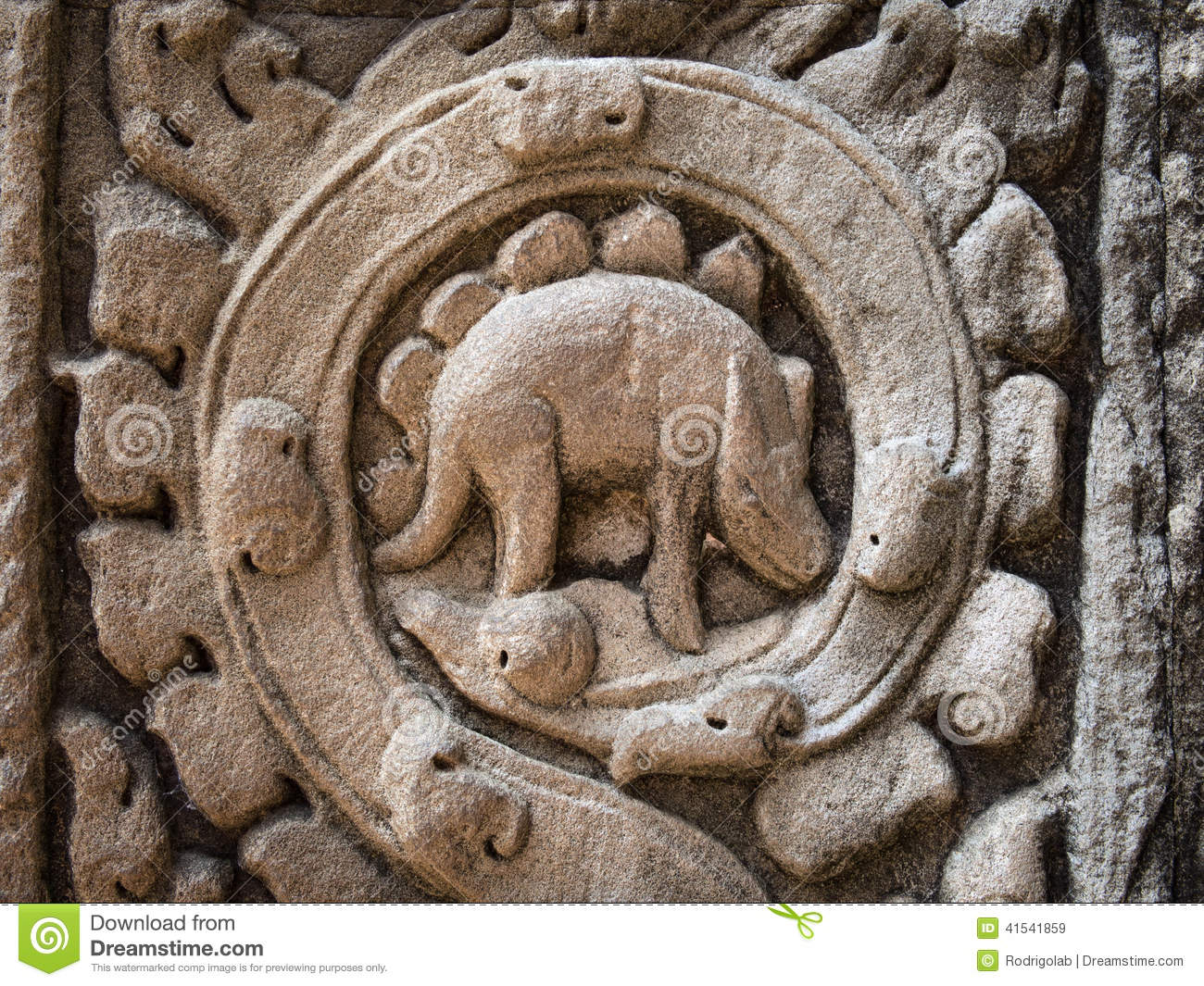 Mysterious carving at ta prohm temple angkor cambodia