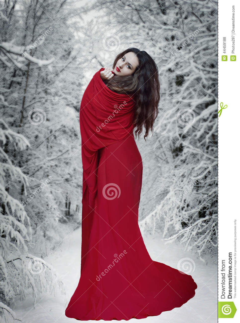 Book Cover Watercolor Dress : Mysterious fantasy woman in red dress forest at snow