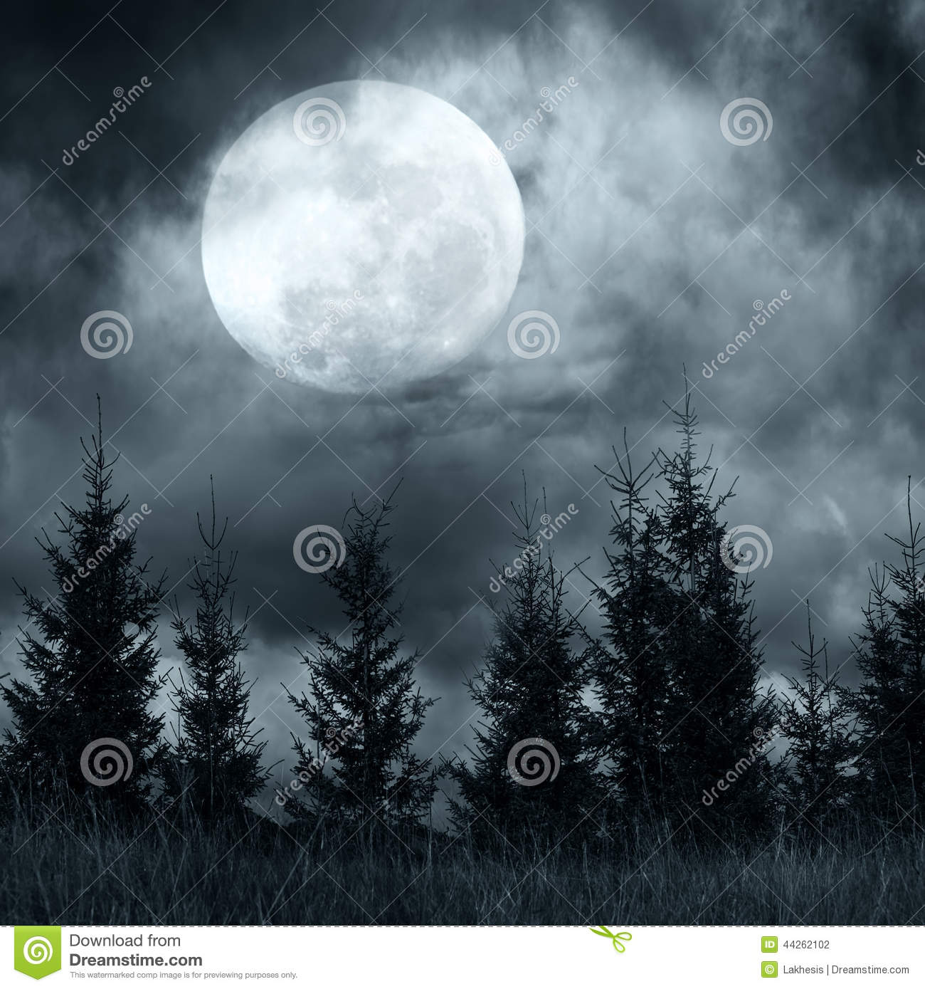 Mysterious Forest Under Dramatic Cloudy Sky At Full Moon