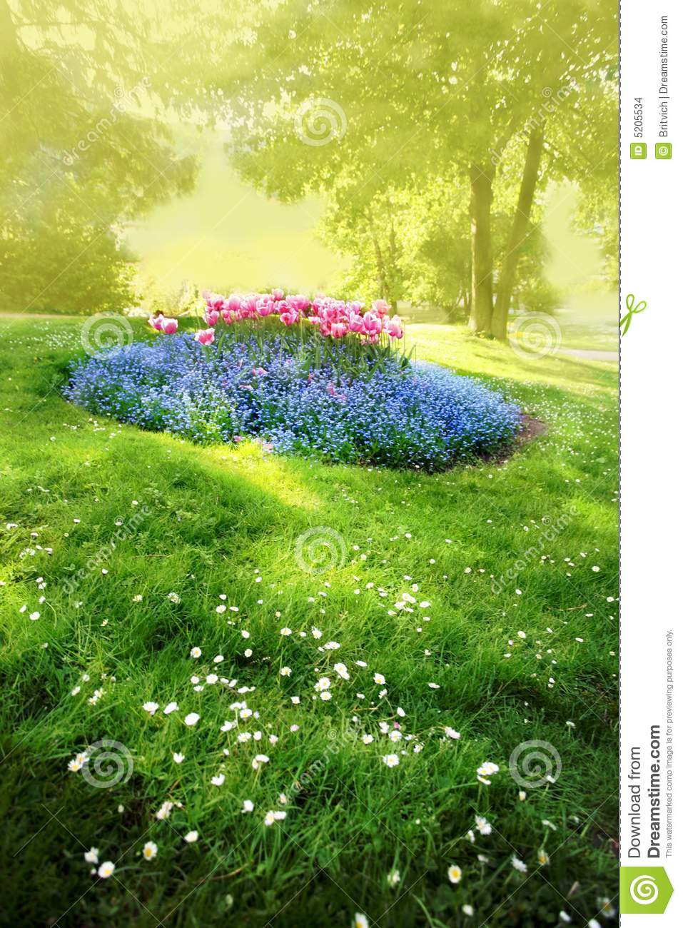 Mysterious Sunny Garden Stock Images Image 5205534