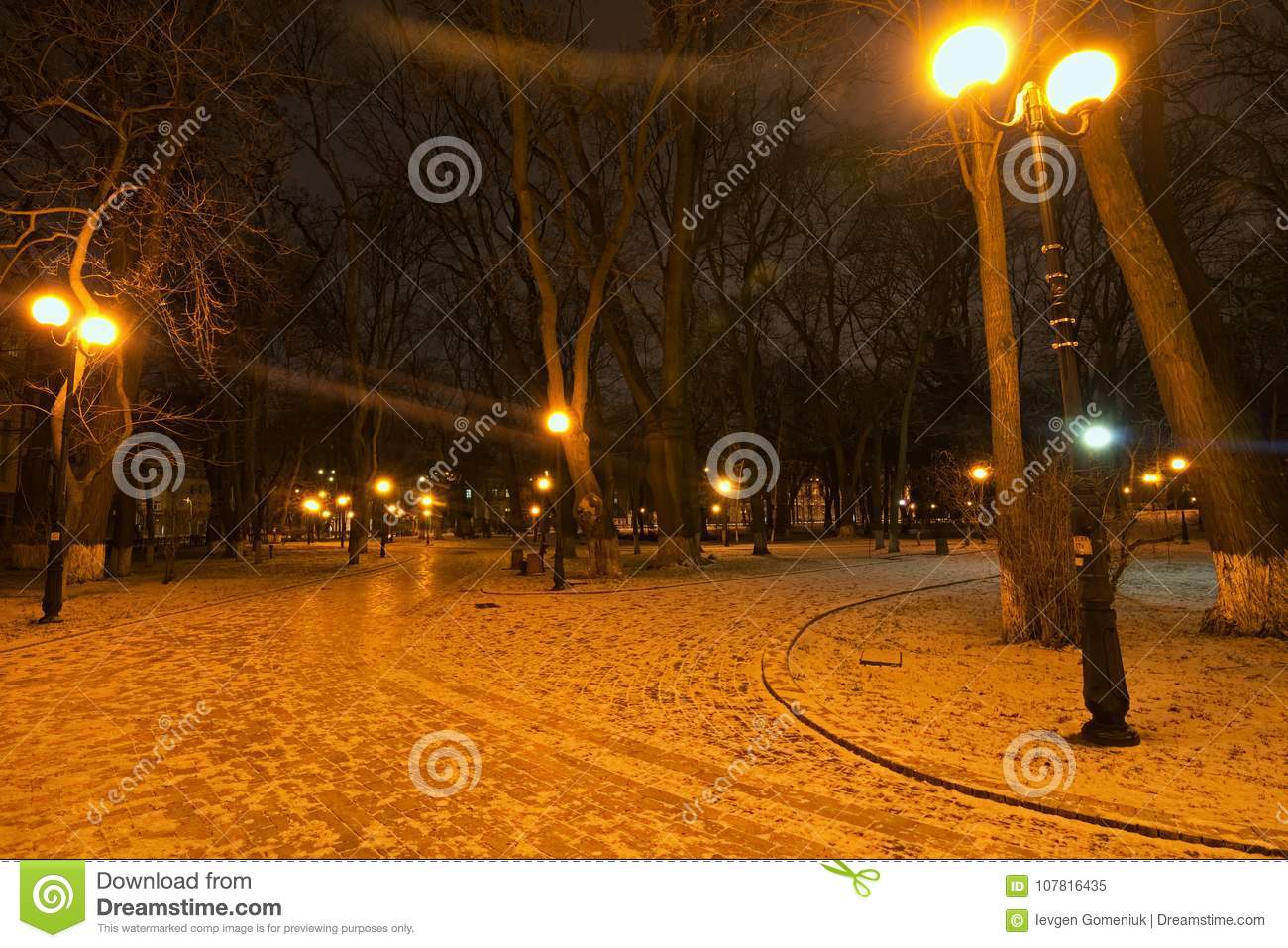 mysterious winter view of mariyinsky park in the early morning