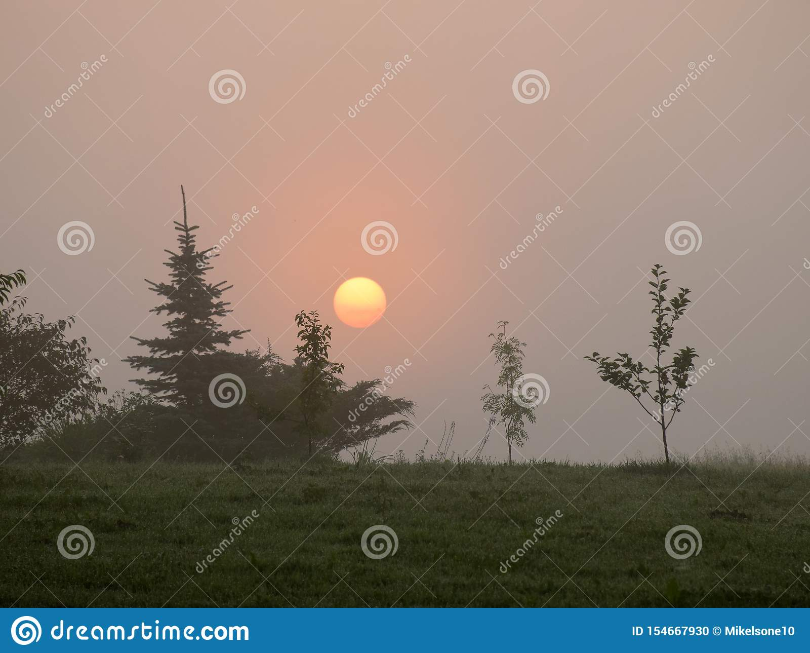 Mystical sun in the morning light
