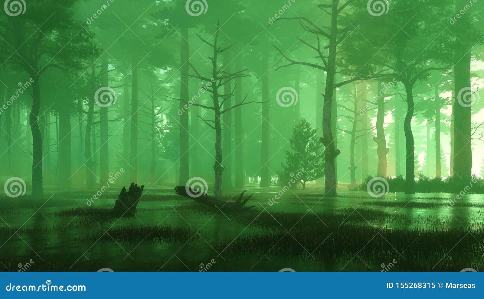 Mystiskt skogträsk på den dimmiga natten eller skymning