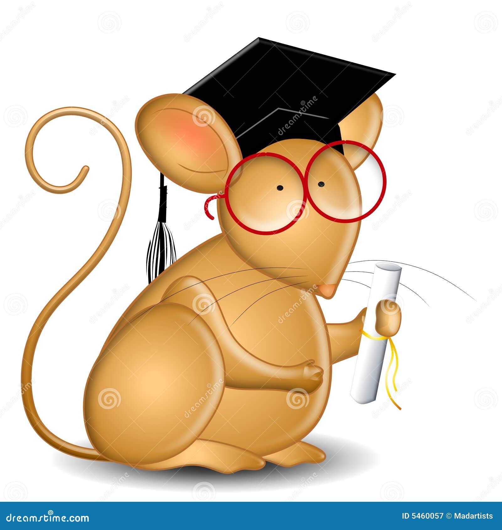Mysz absolwenta college
