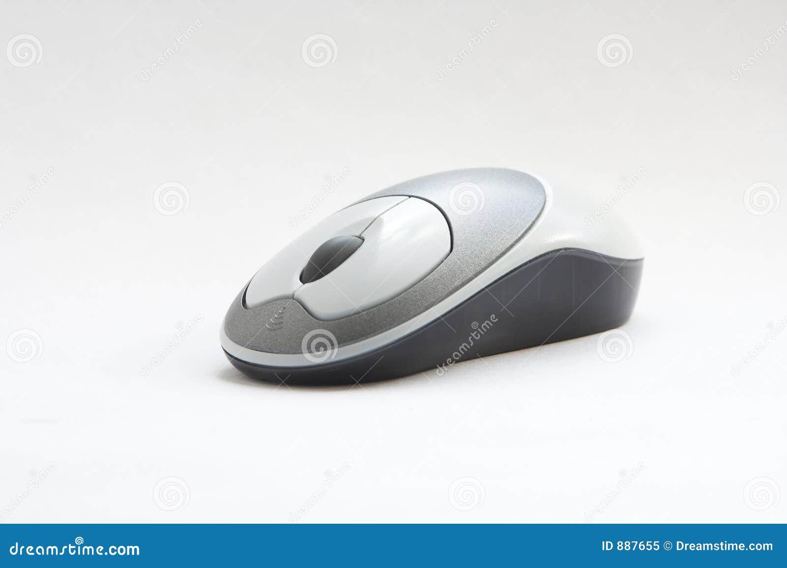 Myszy urzędu