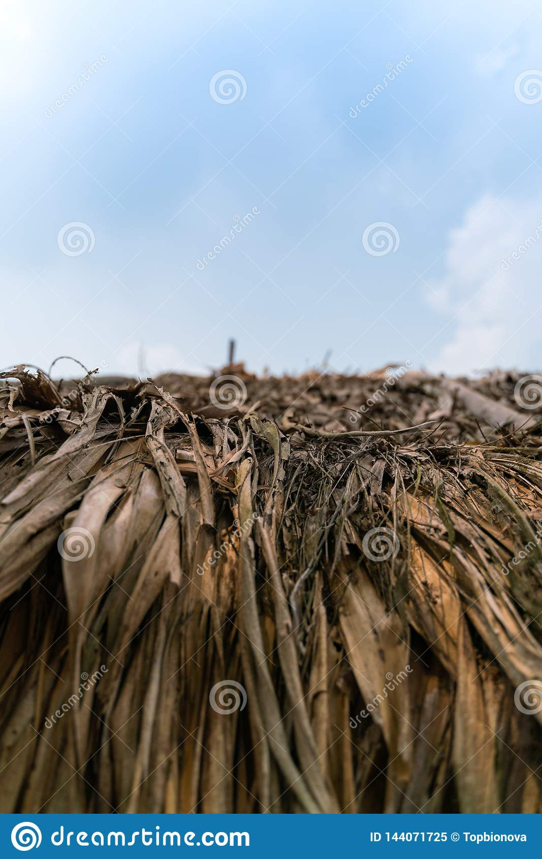 Närbild av Thatched taket