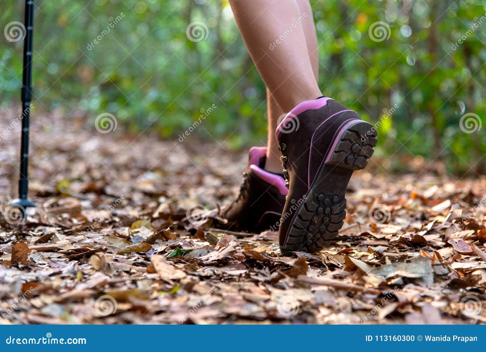Närbilden av kvinnlig fotvandrarefot och skon som går på skog, skuggar
