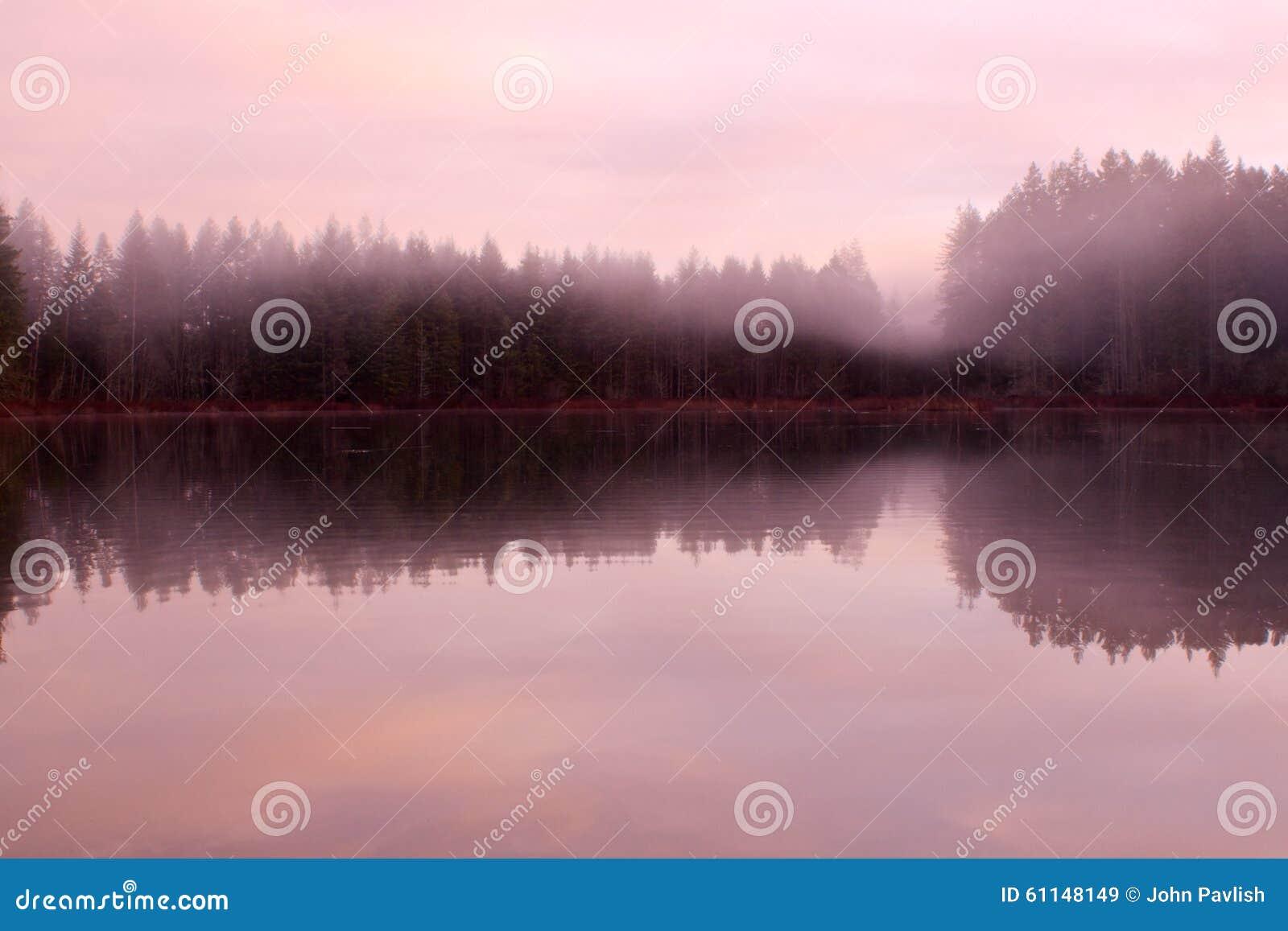 Névoa da manhã sobre o lago