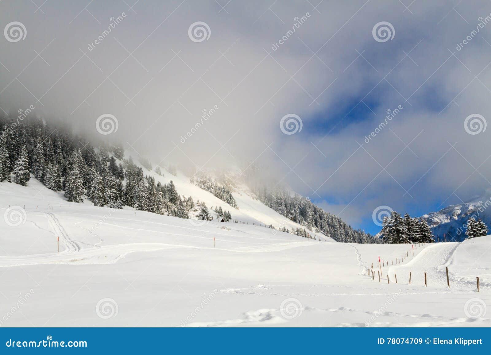 A névoa nas montanhas
