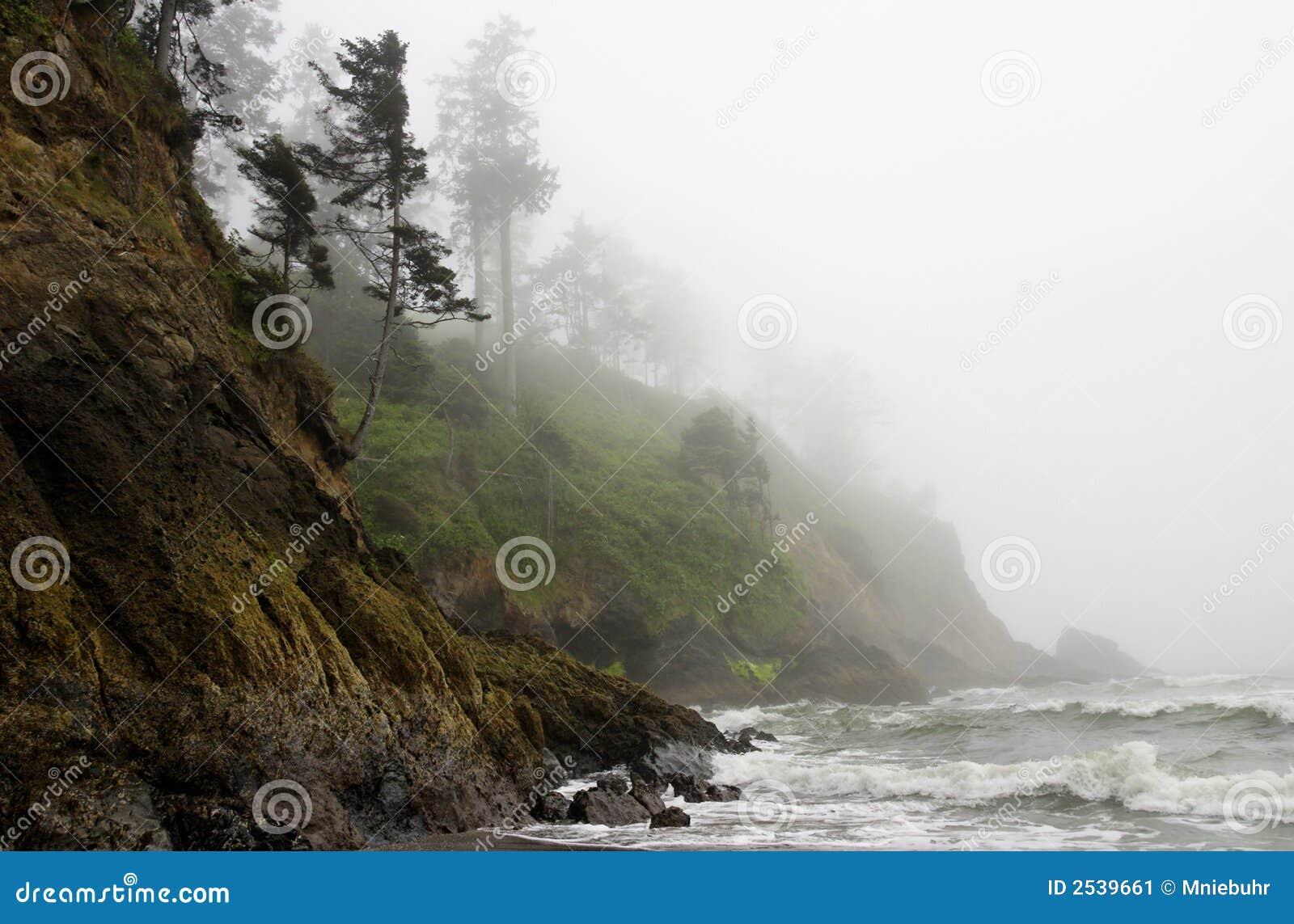 Névoa rochosa da Costa do Pacífico