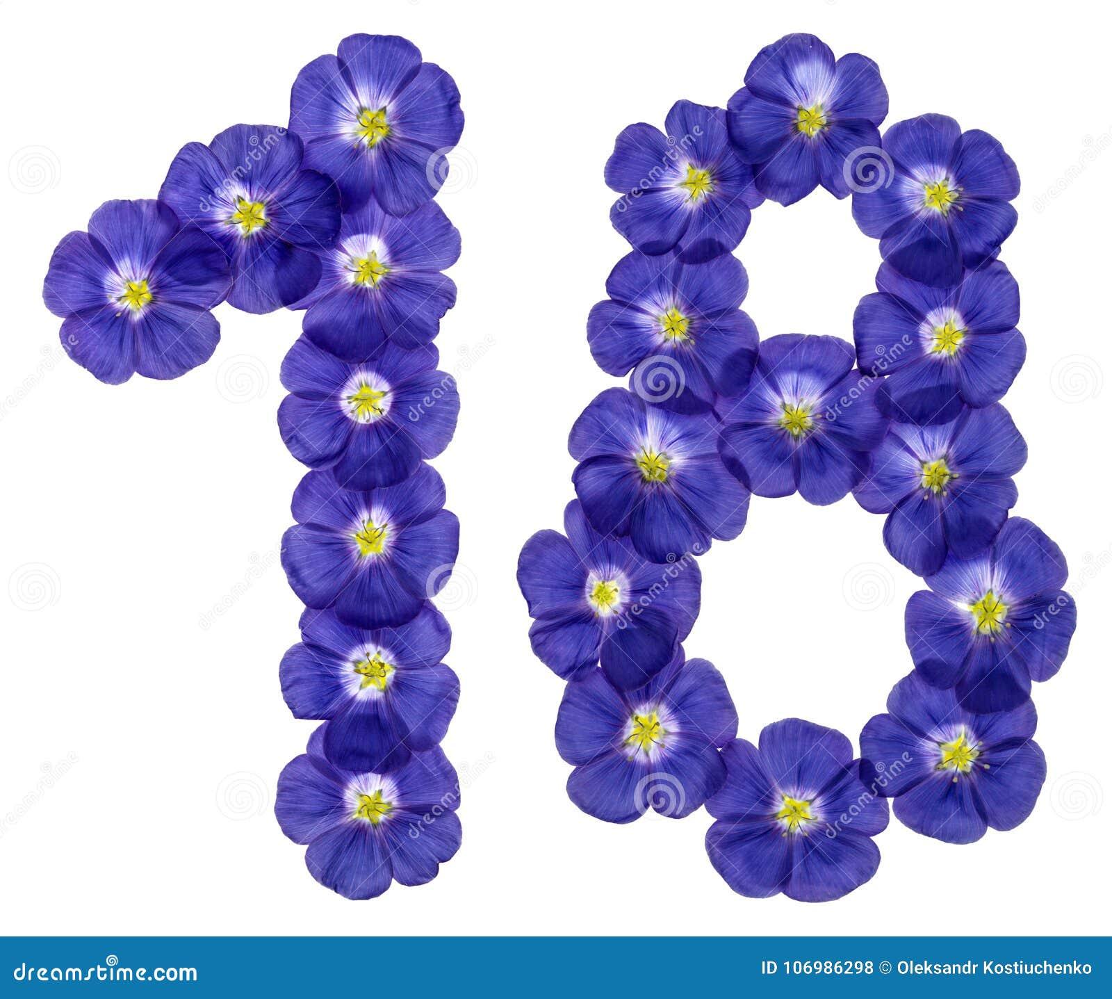 Número árabe 18, dieciocho, uno, de las flores azules del lino, ISO