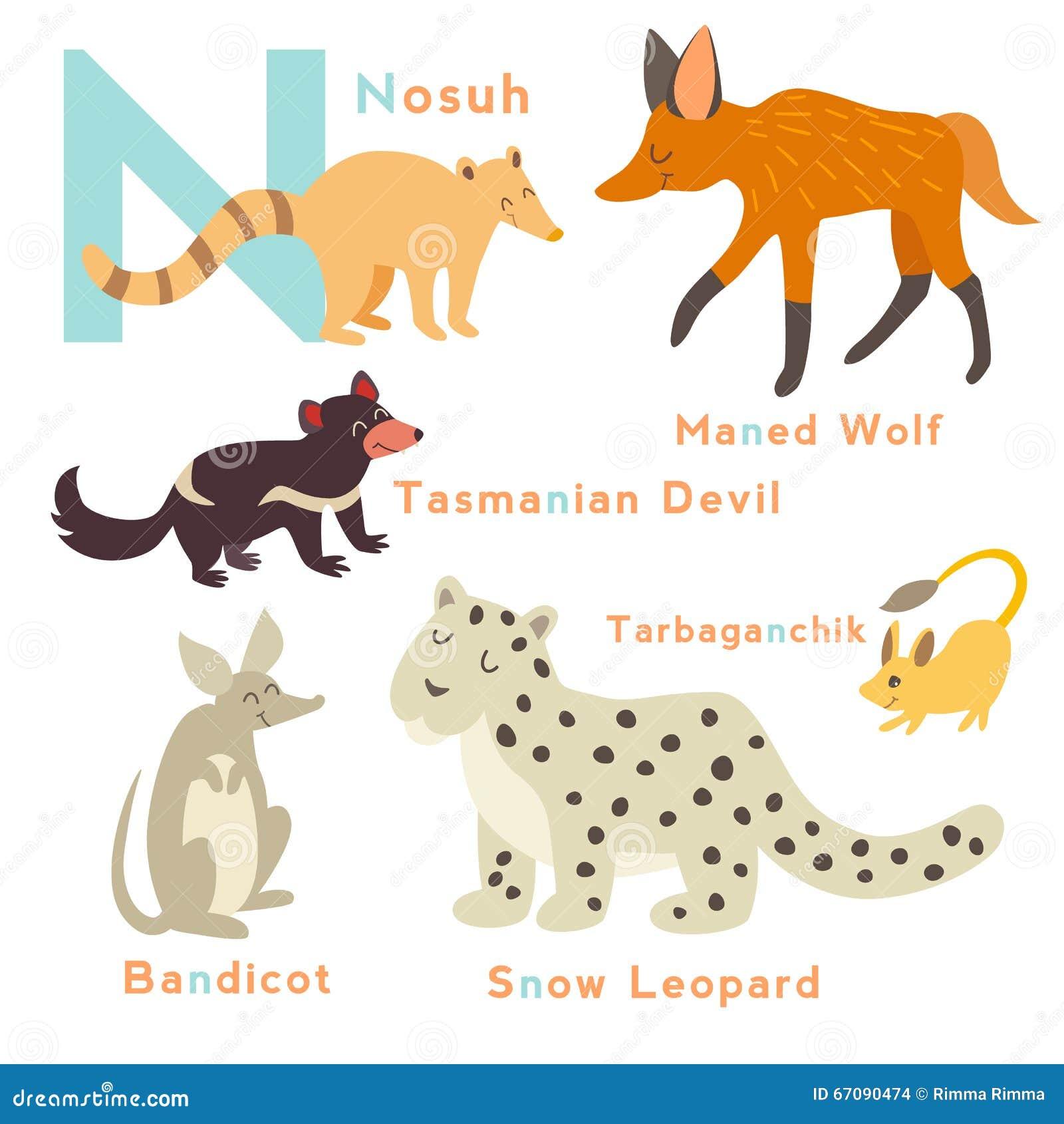 n letter animals set. english alphabet. vector illustration stock