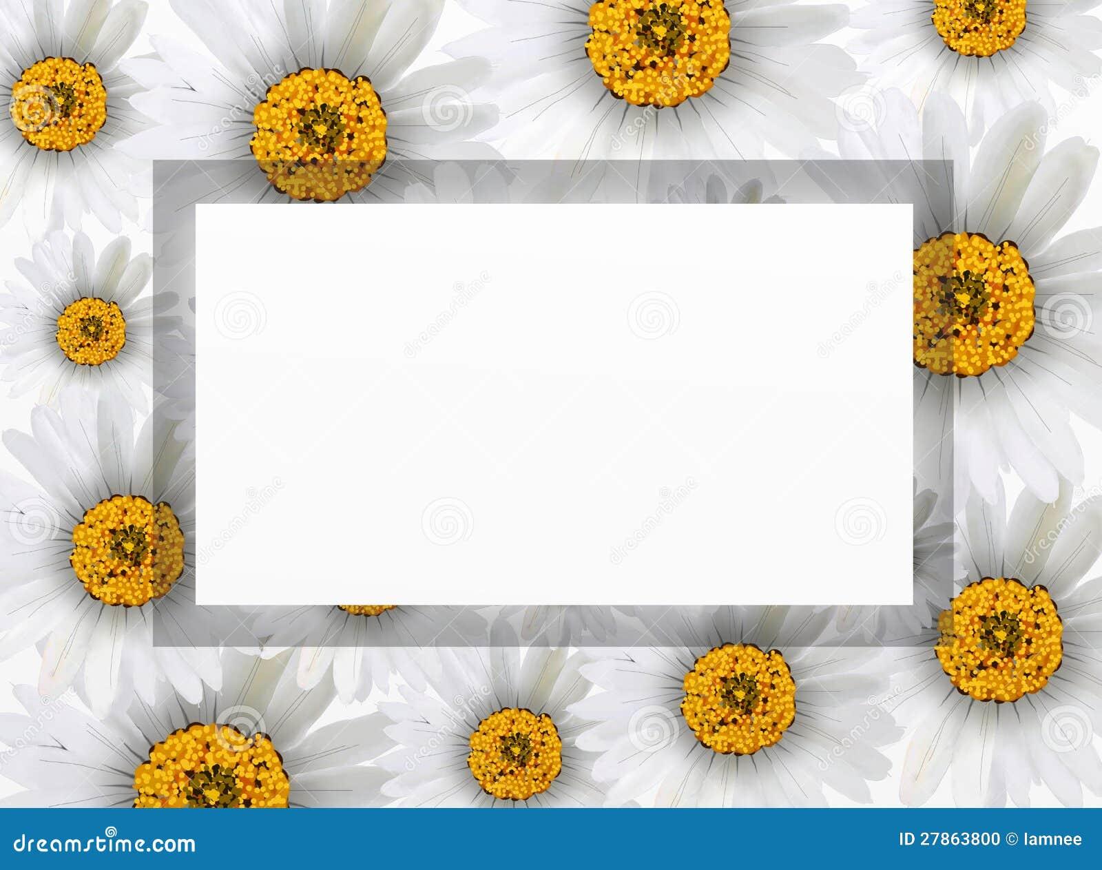 Na Biel Pionowo Ramie Chamomile świezi Kwiaty