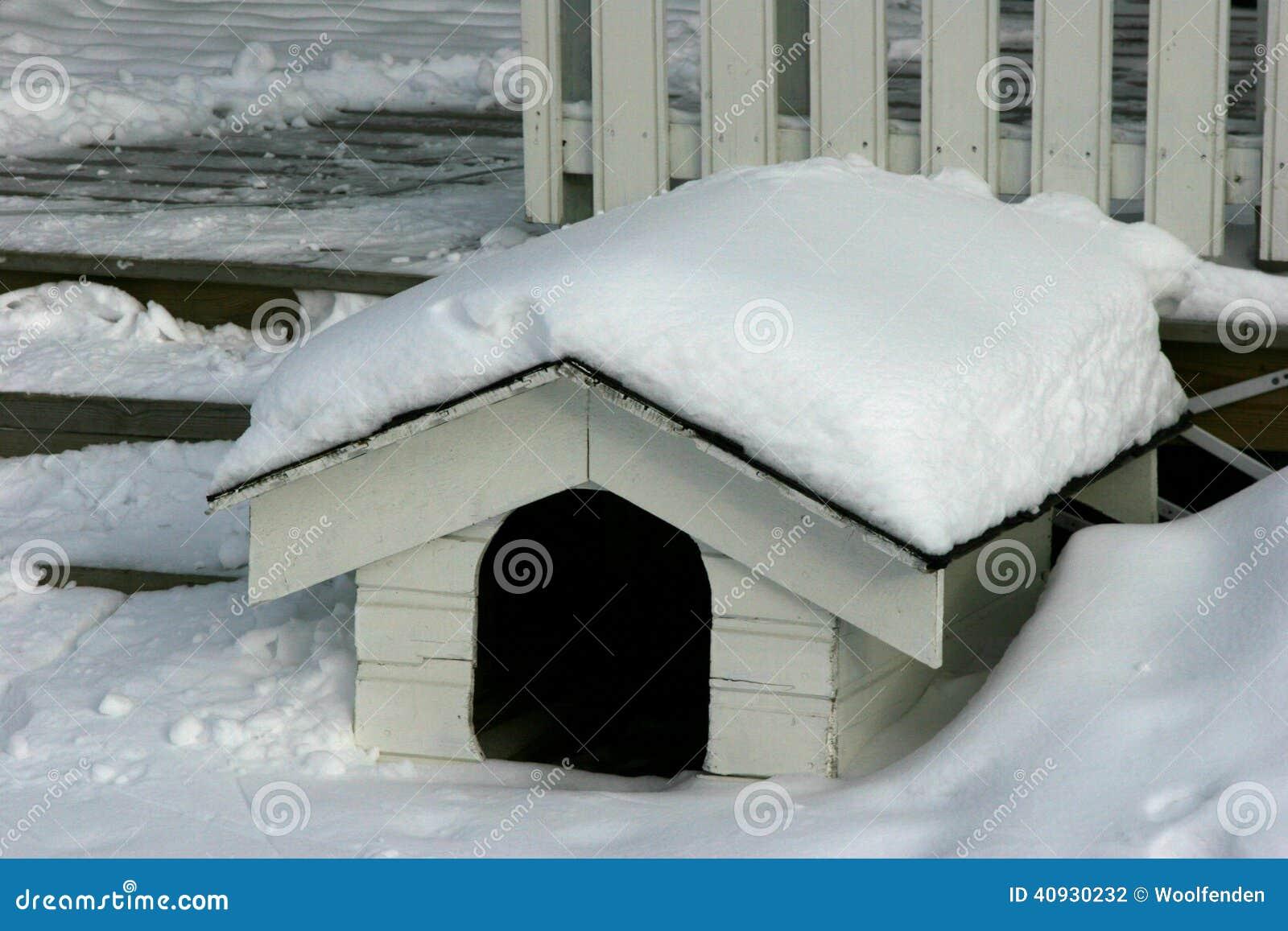 Na casa de cachorro - estilo escandinavo