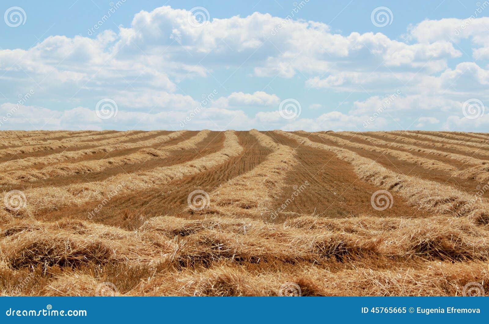 Na oogst