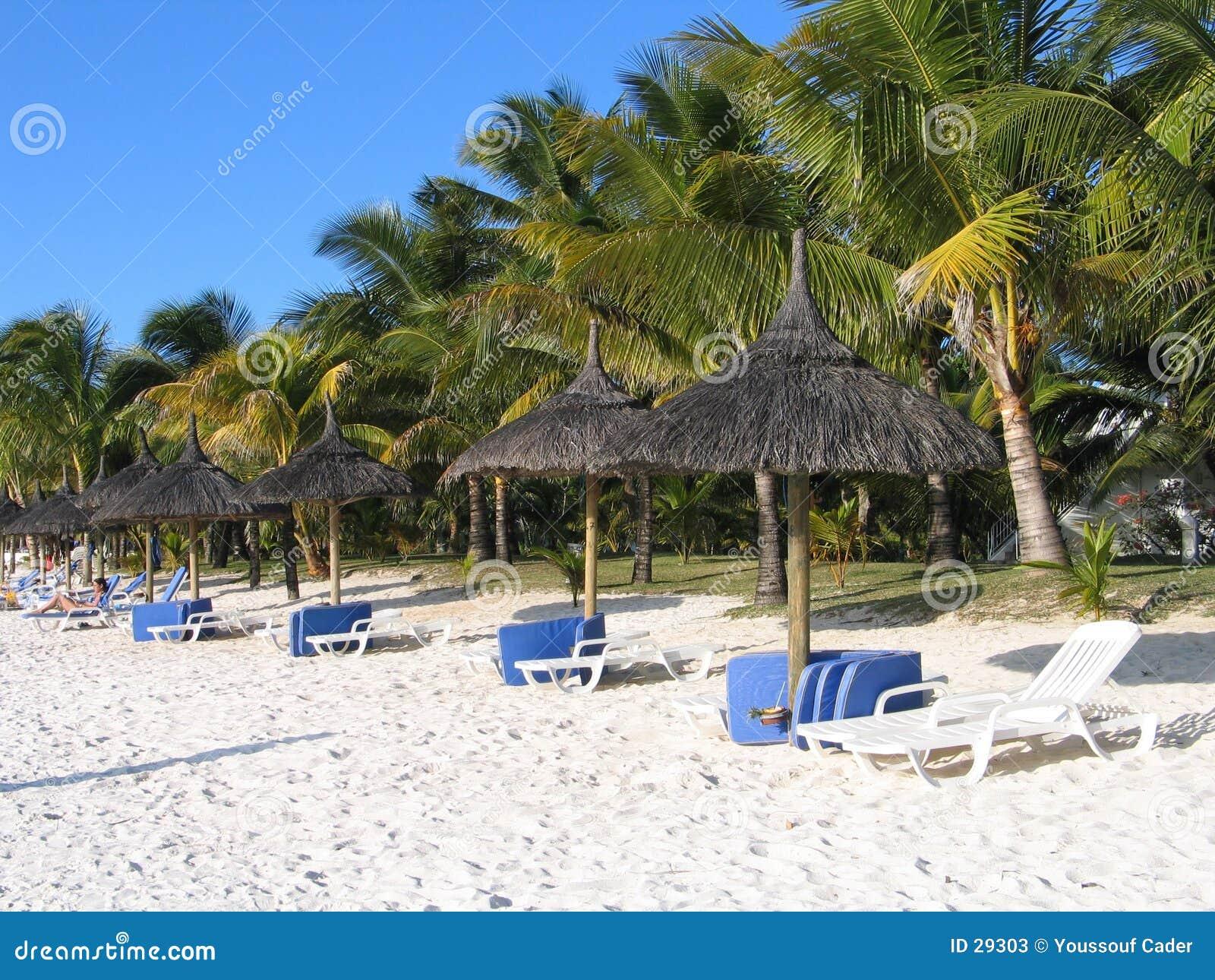 Na plaży trou biches aux