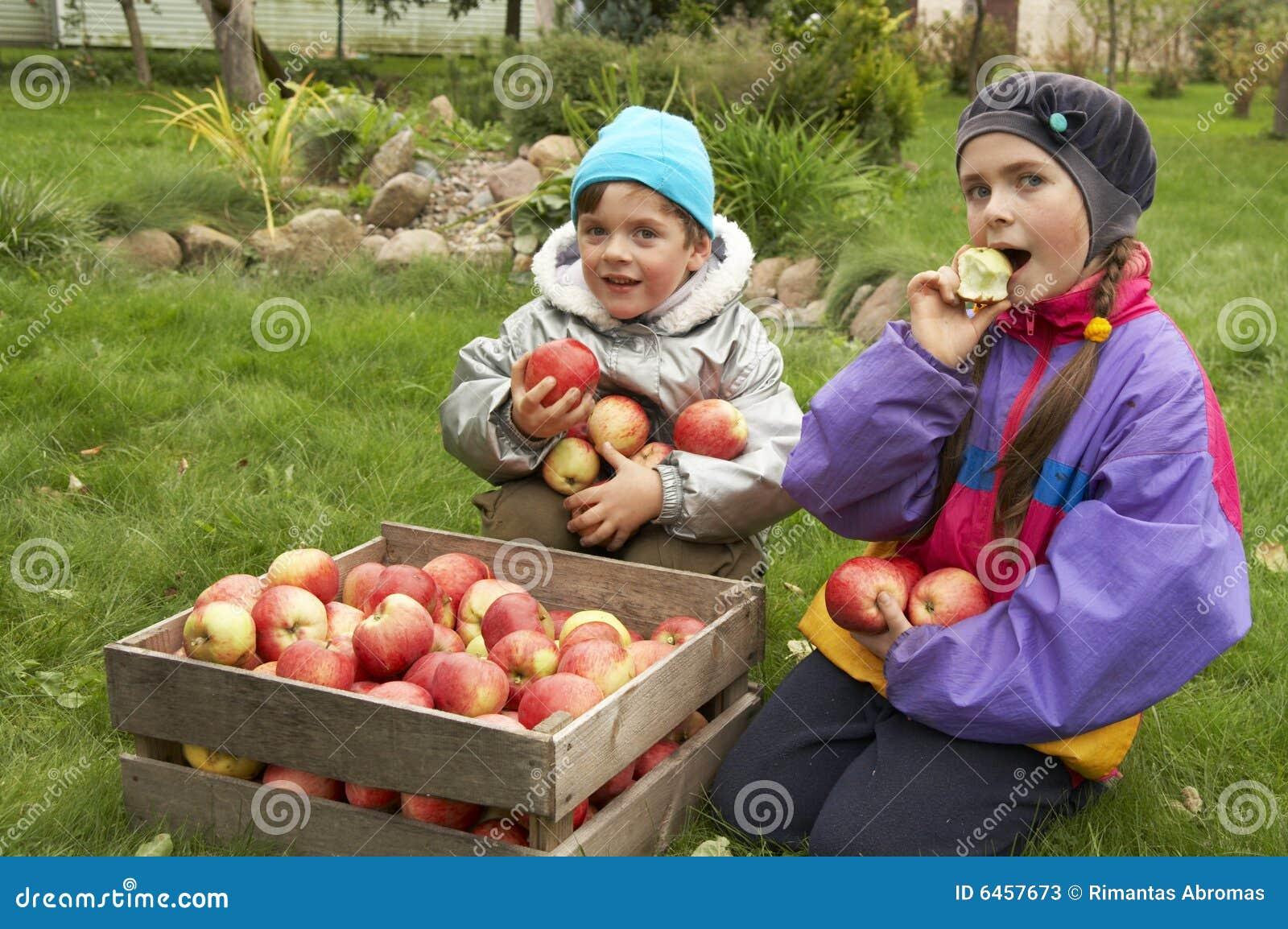 Na zewnątrz jabłka