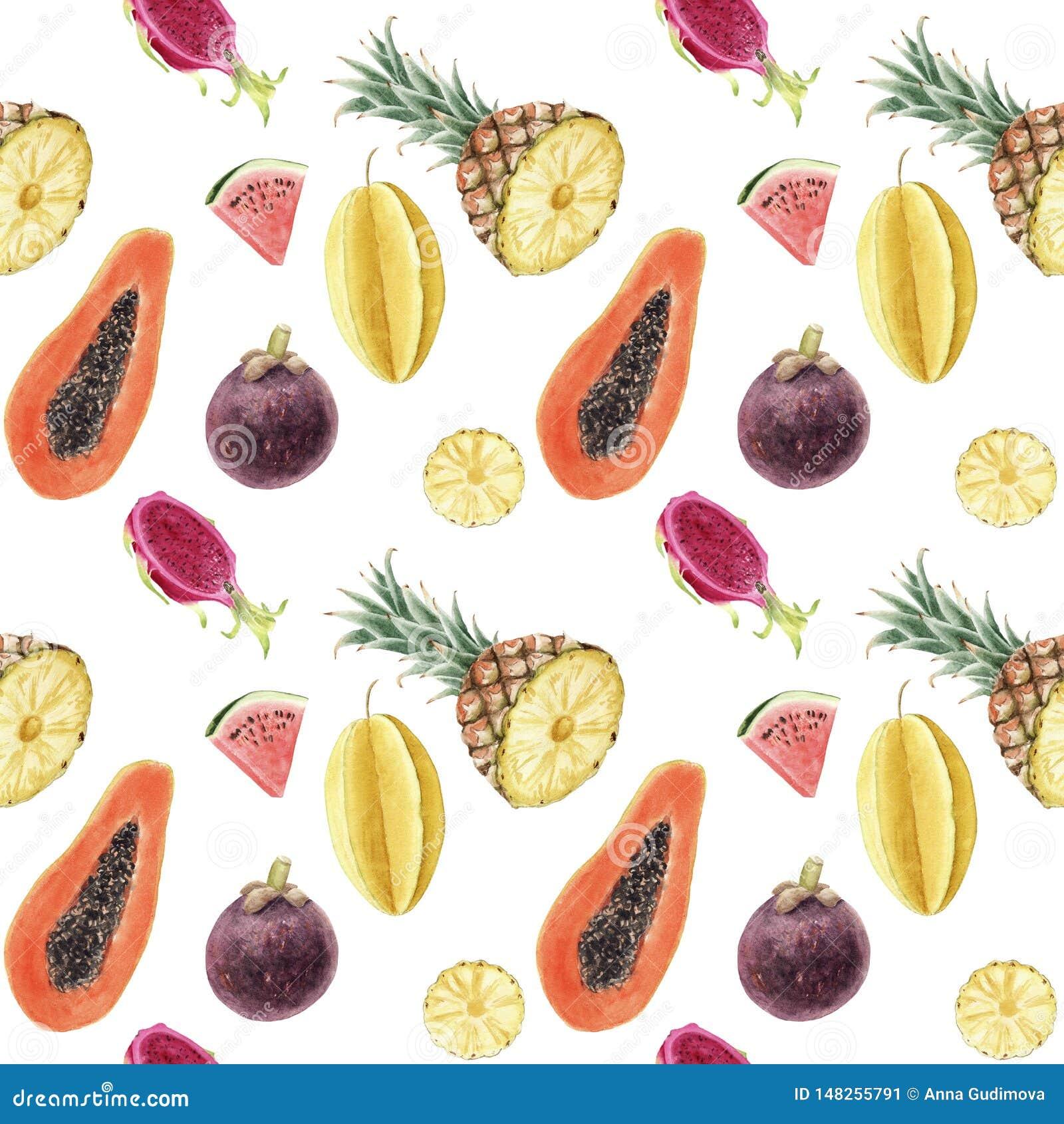 Naadloos hand getrokken mooi waterverf tropisch patroon met sappige vruchten