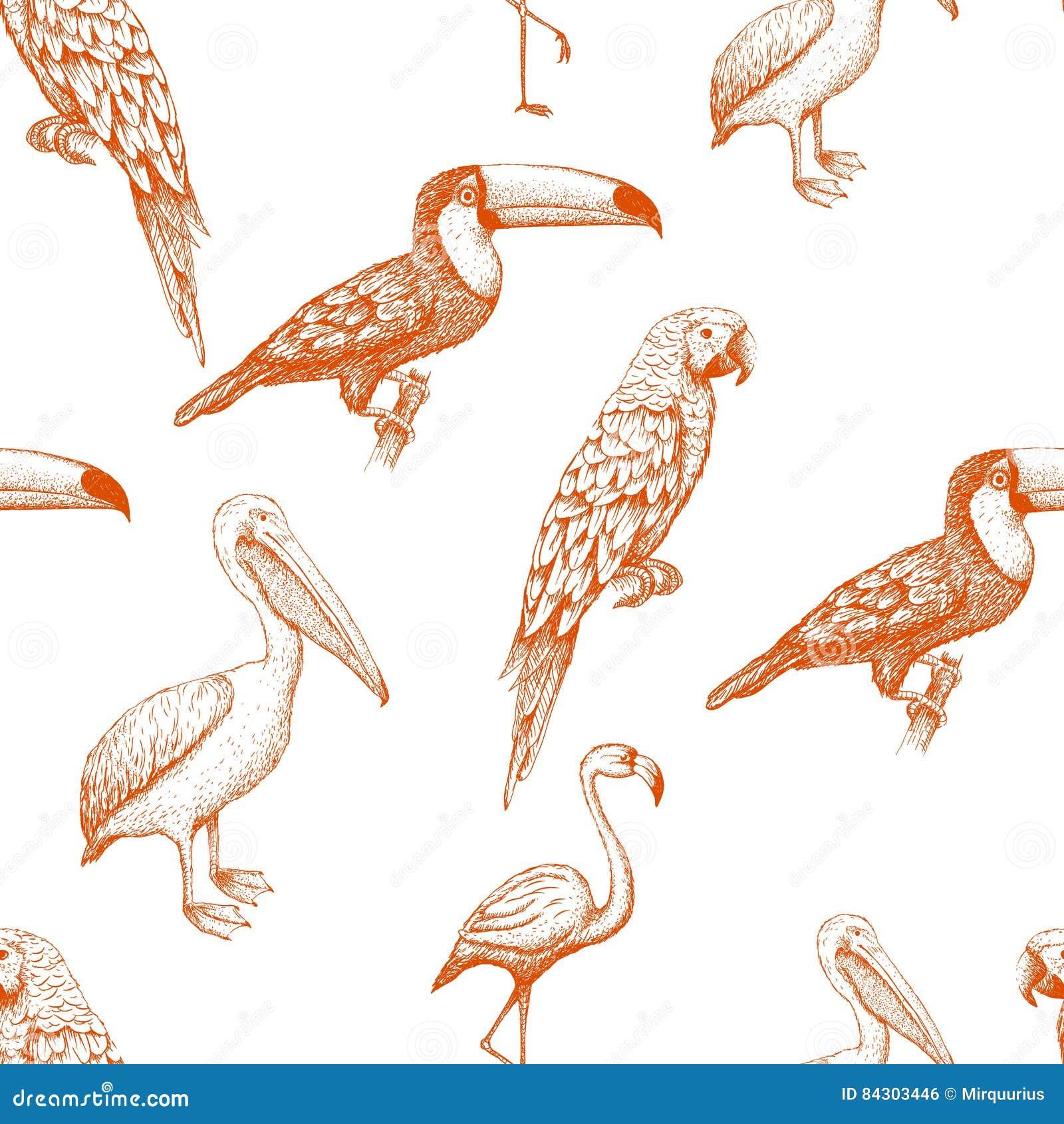 Naadloos patroon met exotische vogels