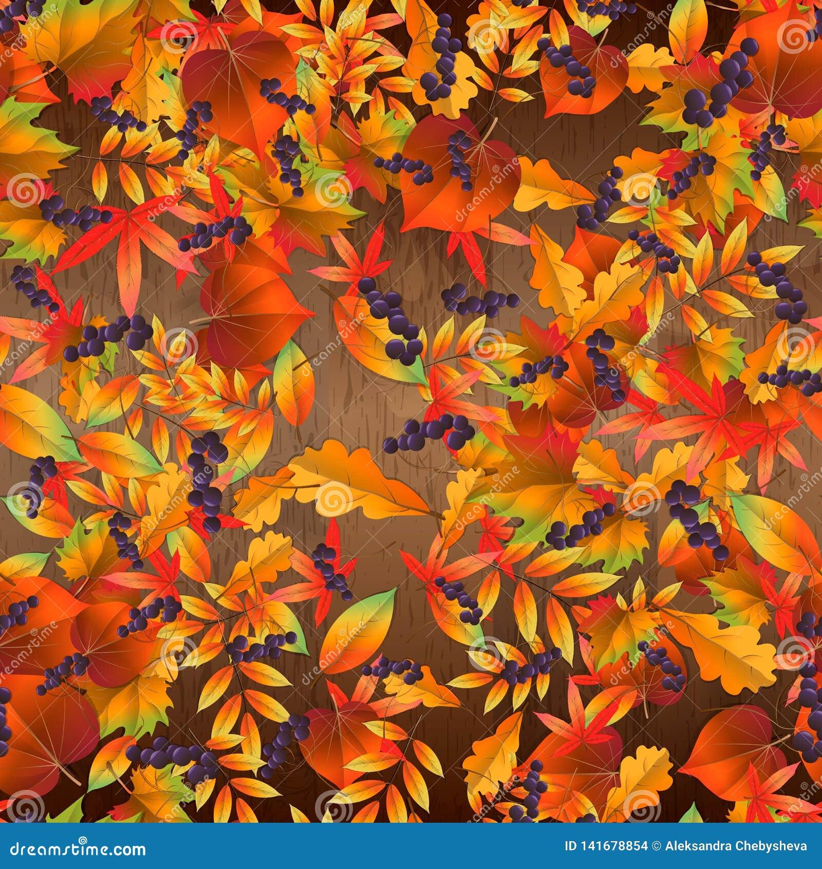Naadloos patroon met kleurrijke de herfstbladeren op houten raad Vector illustratie