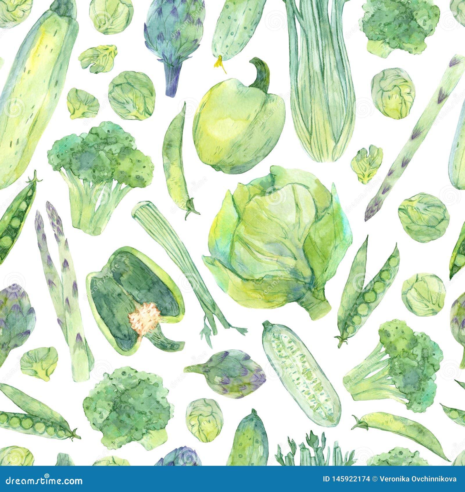 Naadloos patroon met waterverf met de hand geschilderde verse groene groenten