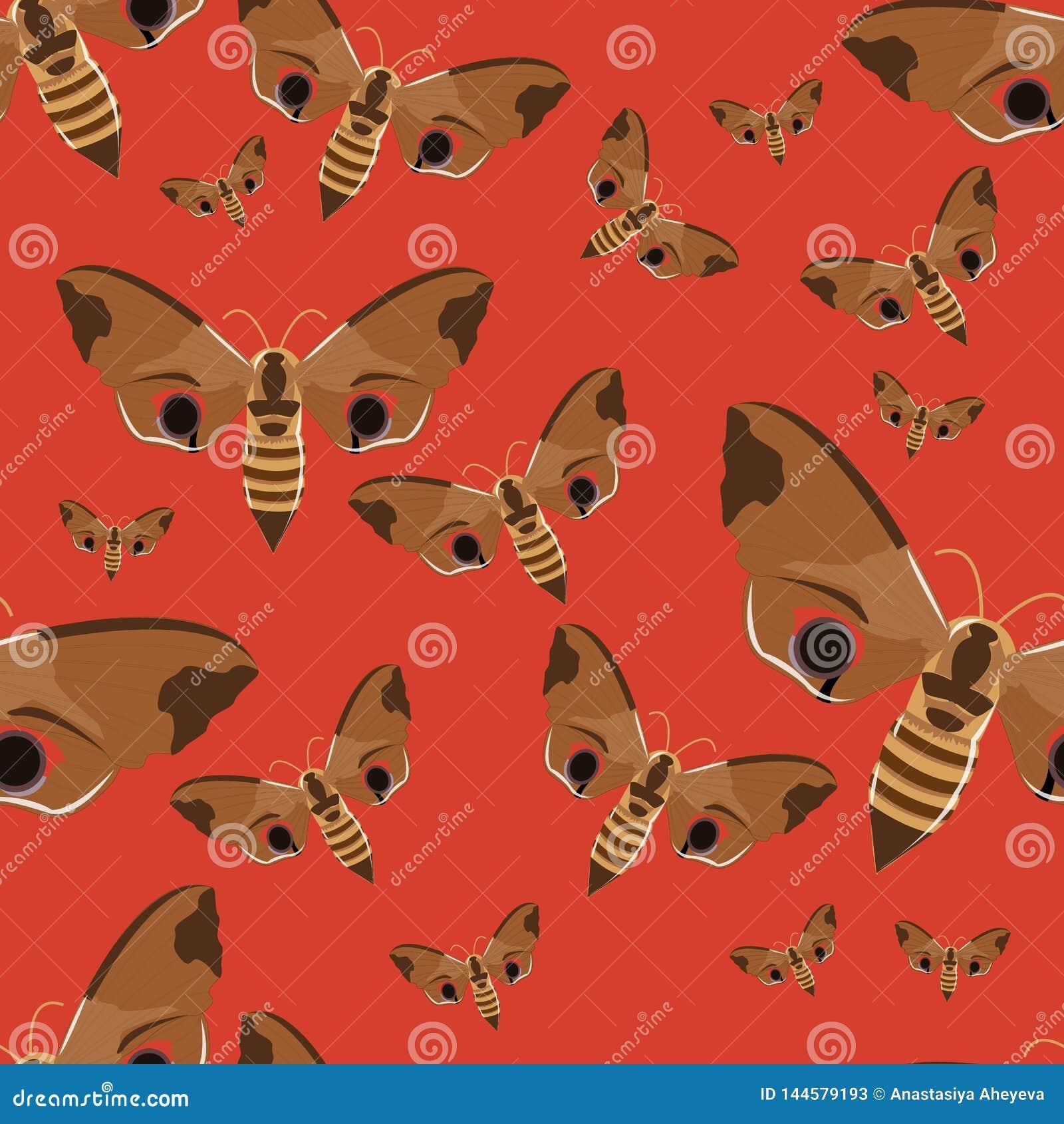 Naadloos patroon Realistische vlinderhavik op een rode achtergrond Insecten in vector
