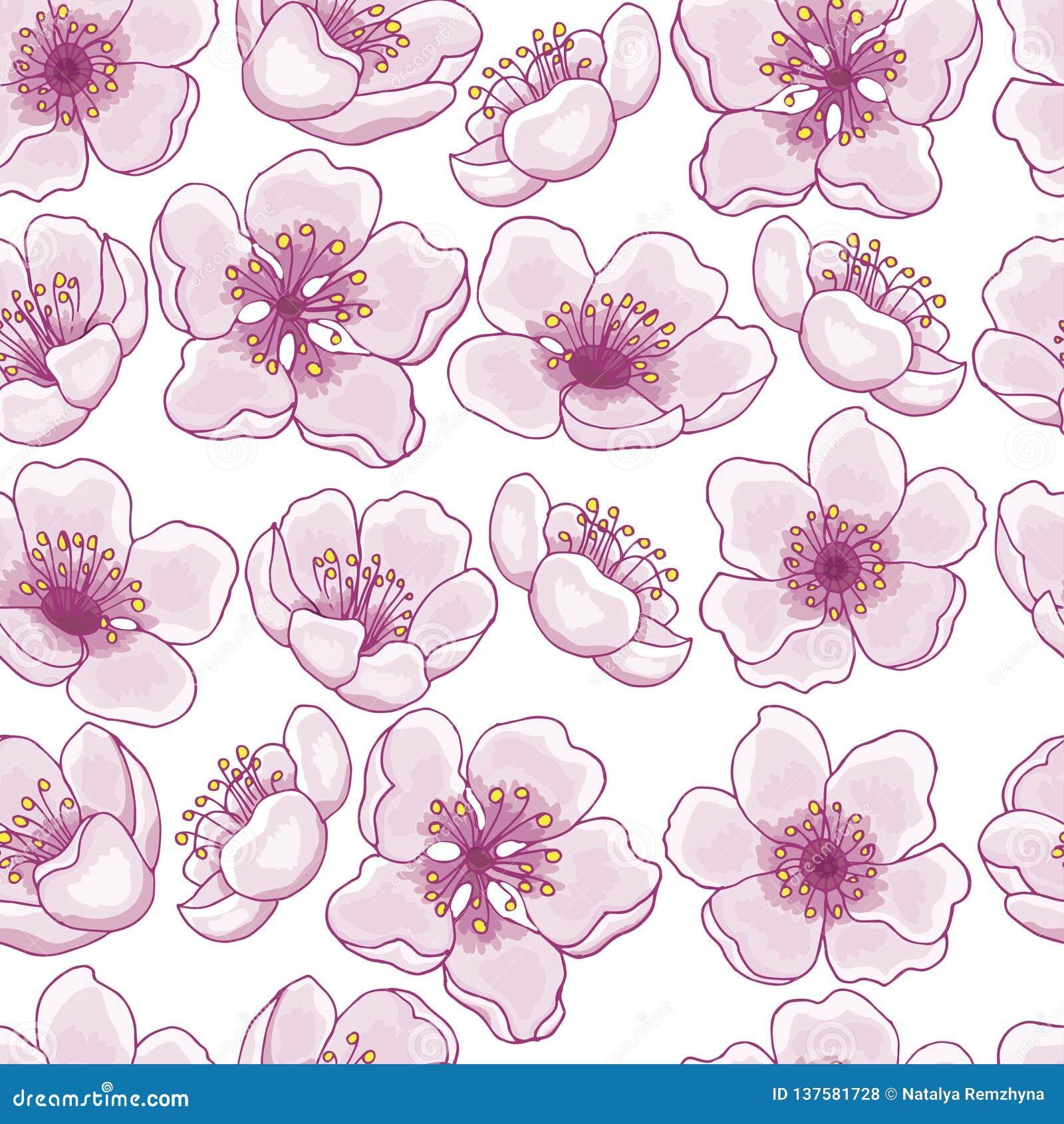 Naadloos patroon van de lentebloemen van roze kers, sakura op een transparante achtergrond Het idee voor het ontwerp van kaarten,