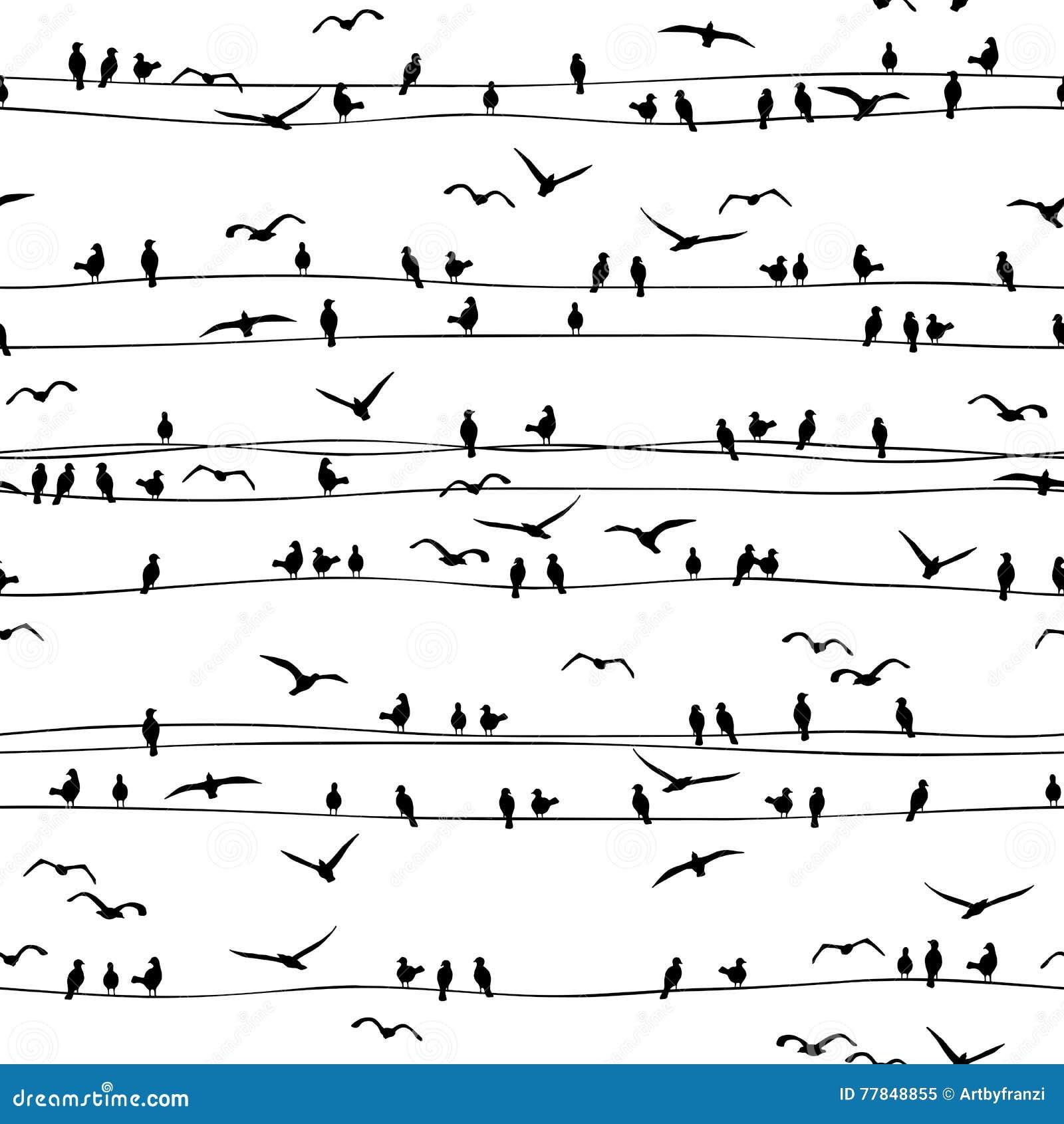 Naadloos patroon van vogels op draden