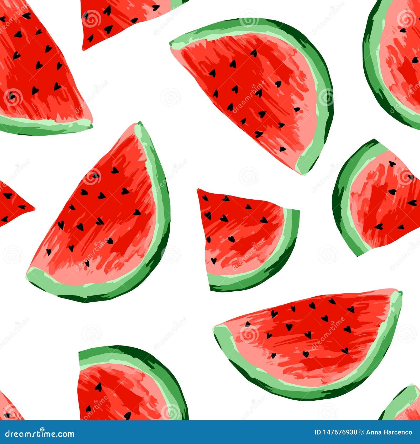 Naadloos watermeloenenpatroon Plakken van watermeloen, bessenachtergrond Geschilderd fruit, grafische kunst, beeldverhaal
