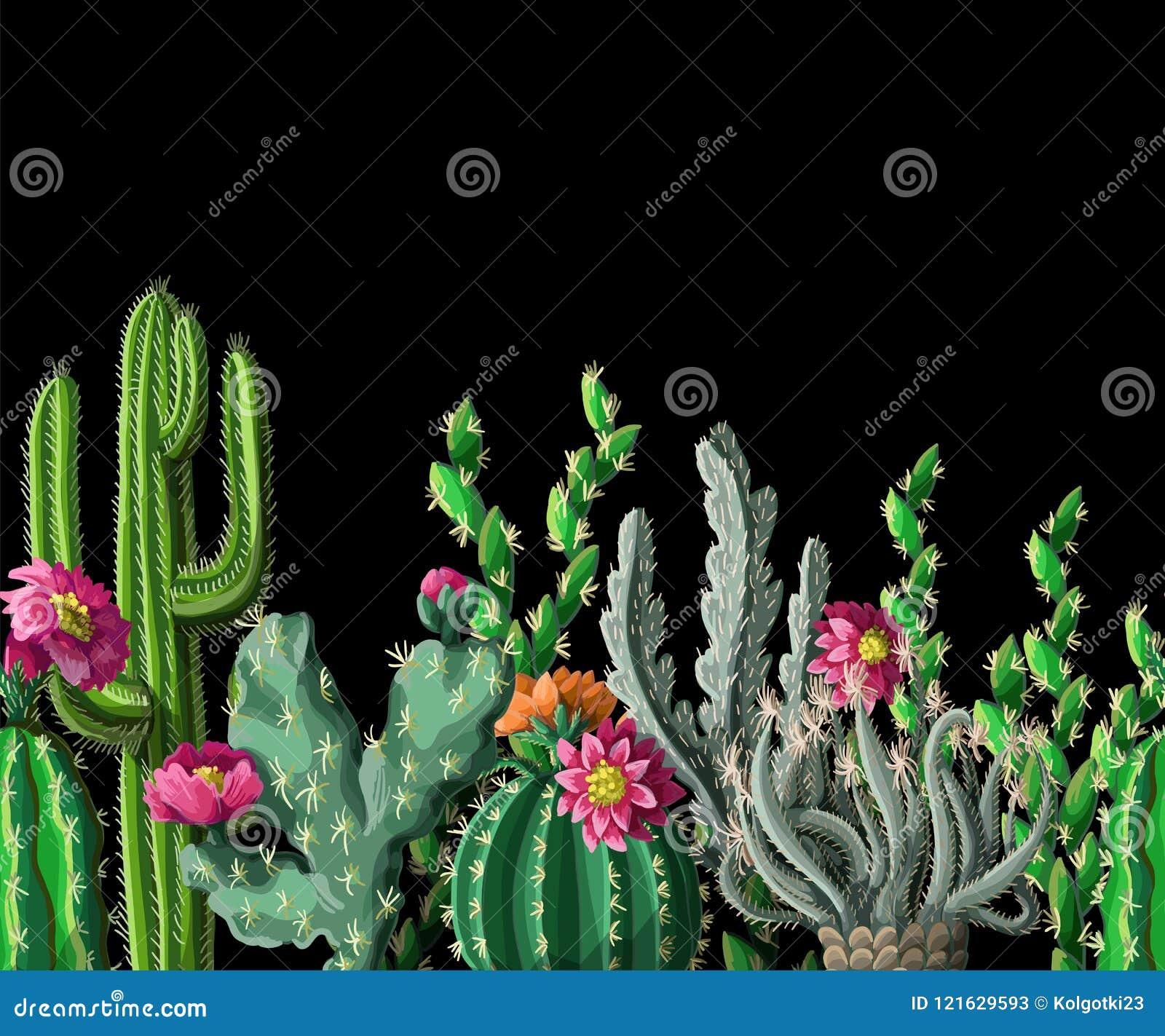 Naadloze grens met cactus en bloemen op donkere achtergrond Vector illustratie