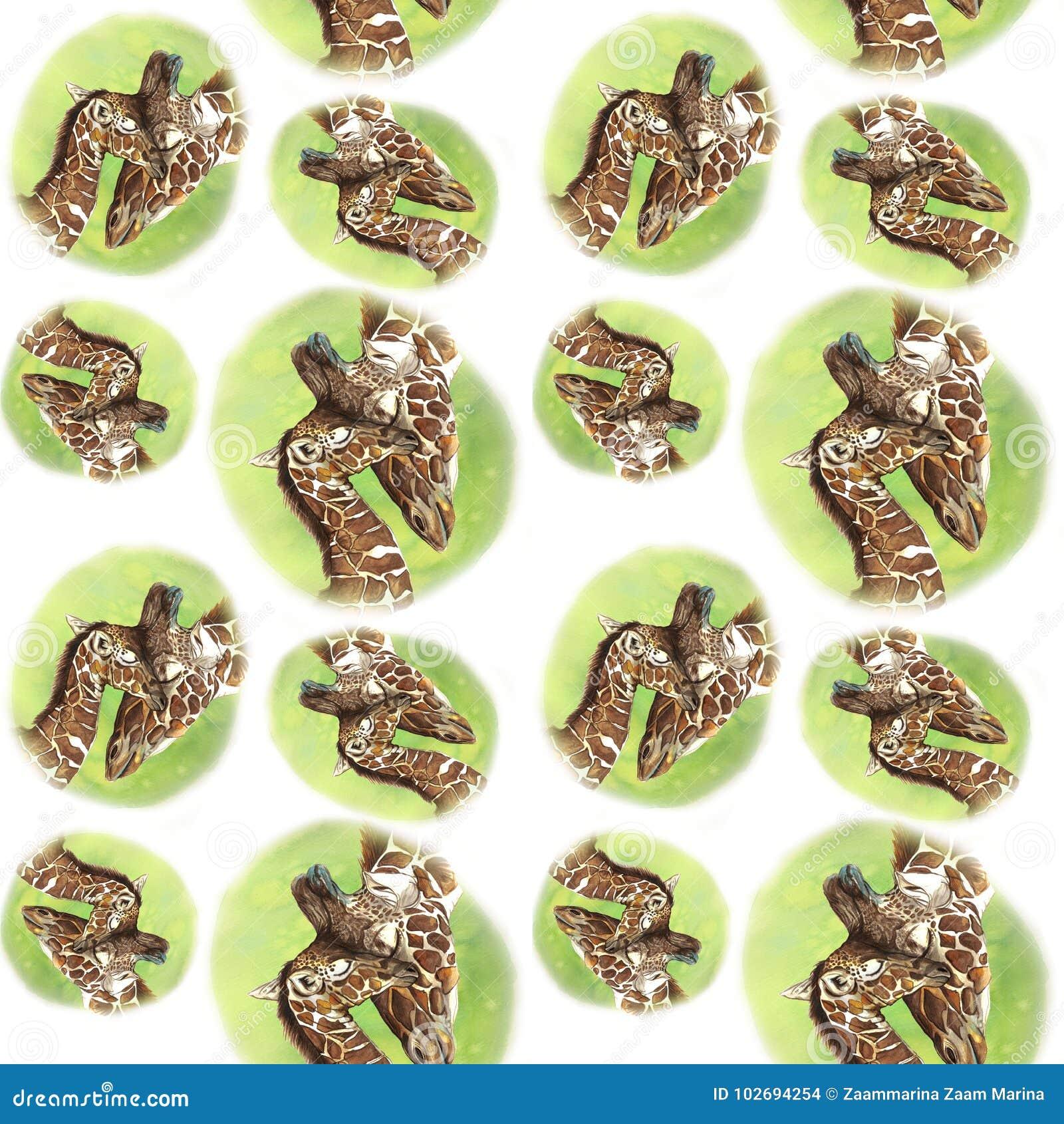 Naadloze het patroon dierlijke zoogdieren die van het waterverfbeeld in de giraffen van Afrika, moeder en kind, vrouwelijke giraf