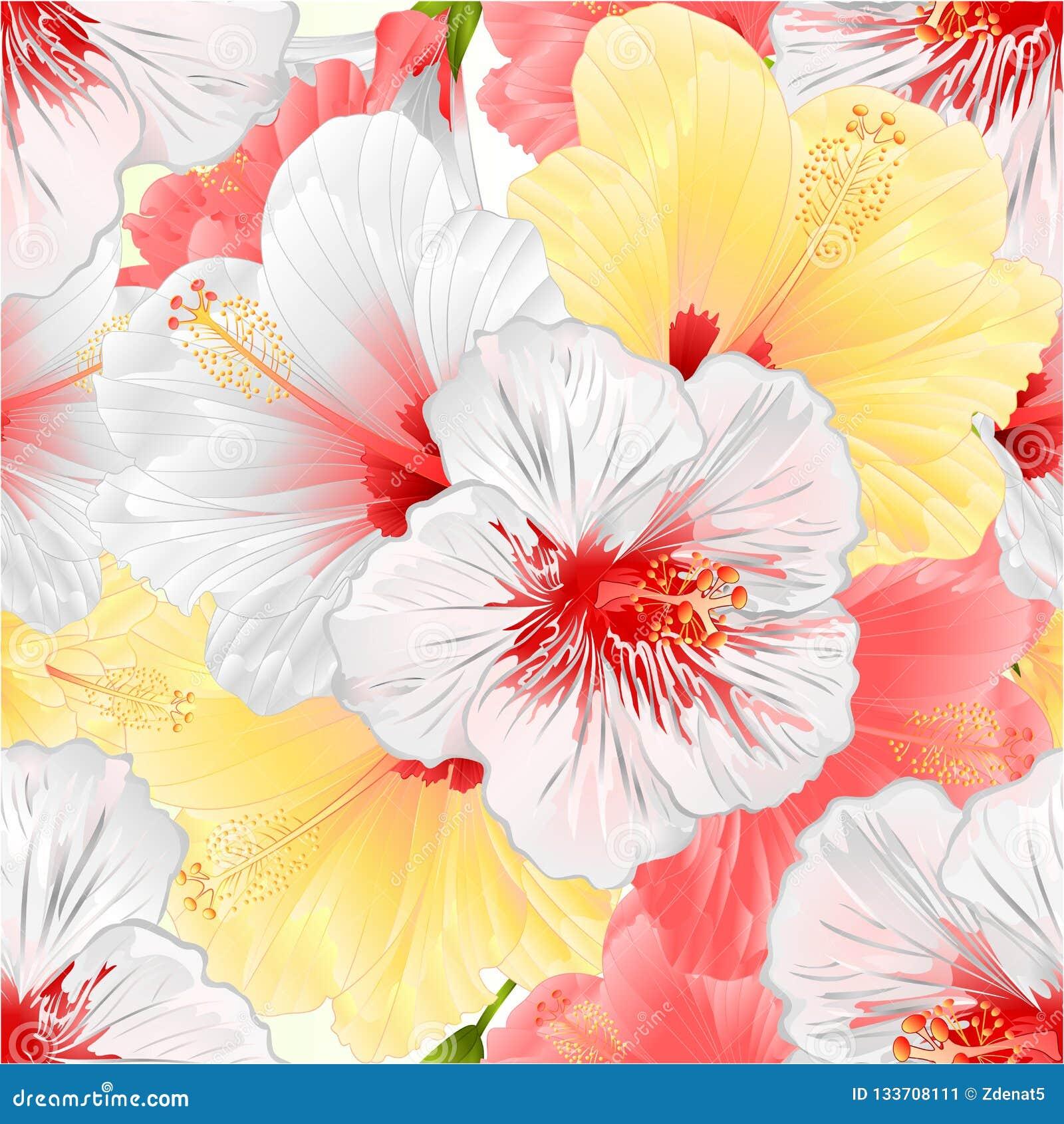 Naadloze textuur witte roze en yelow tropische van de installatiehibiscus uitstekende vector editable illustratie natuurlijke als