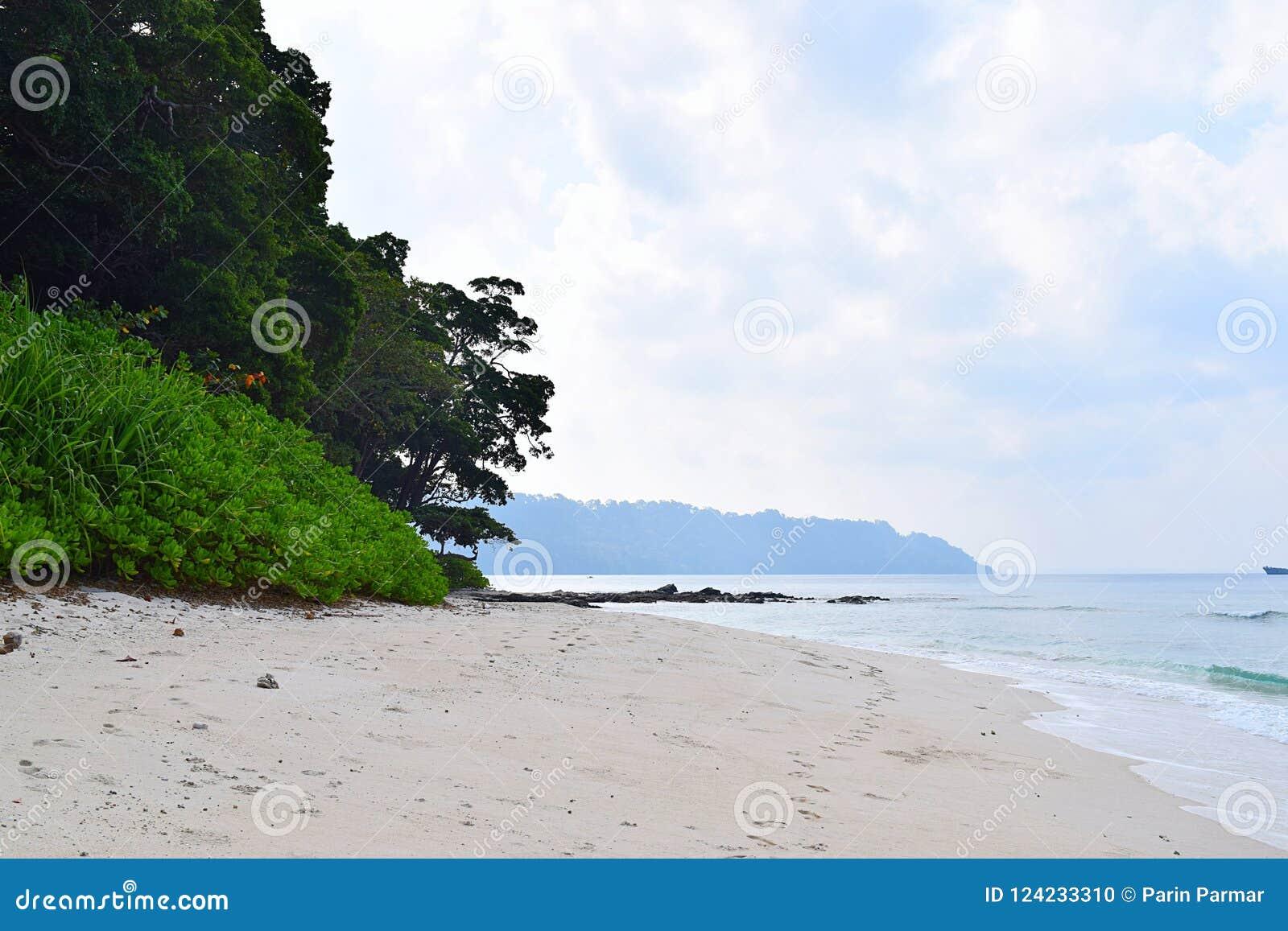Nabrzeżna roślinność, Biała Piaskowata plaża, ocean, niebo i pokój, - Radhanagar plaża, Havelock wyspa, Andaman Nicobar, India