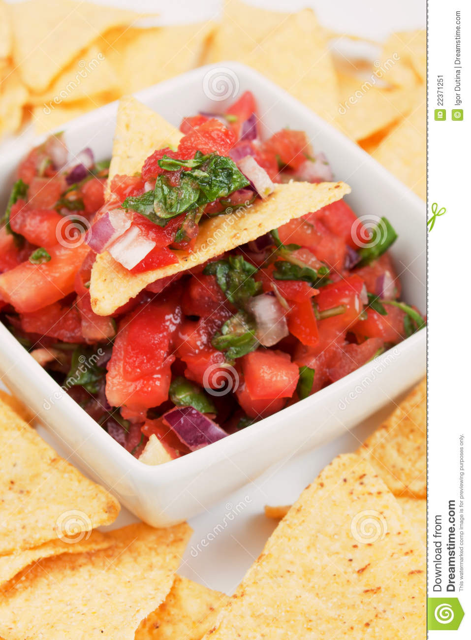 Nachos Corn Chips With Homemade Salsa Stock Image