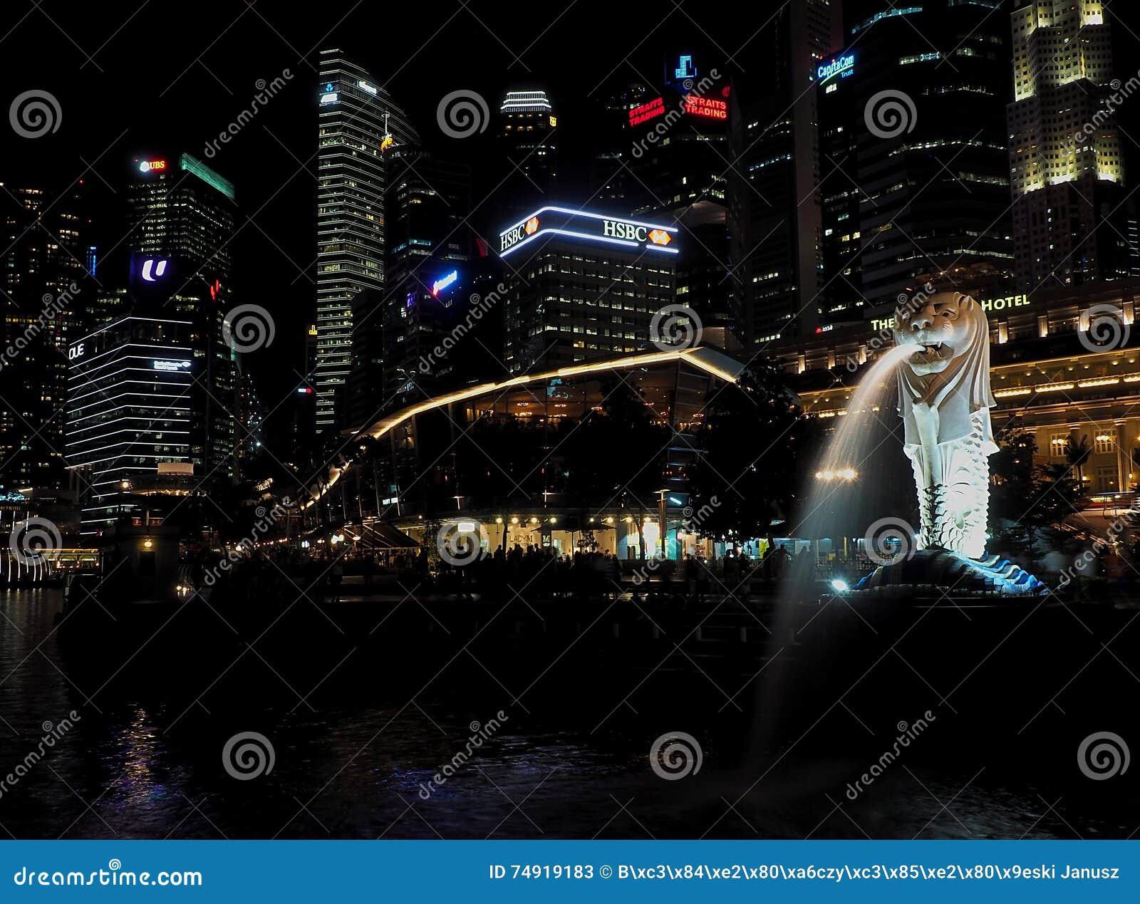 Nachtcharme van Singapore