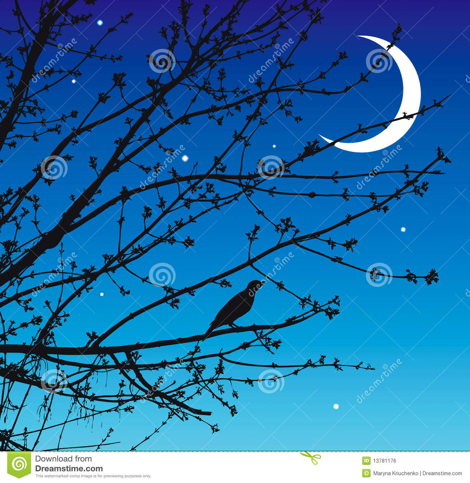 Nachtlied der Nachtigall