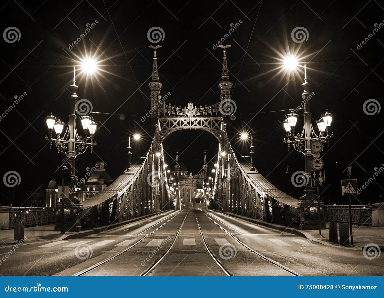 Nachtmening van Liberty Bridge in Boedapest, Hongarije