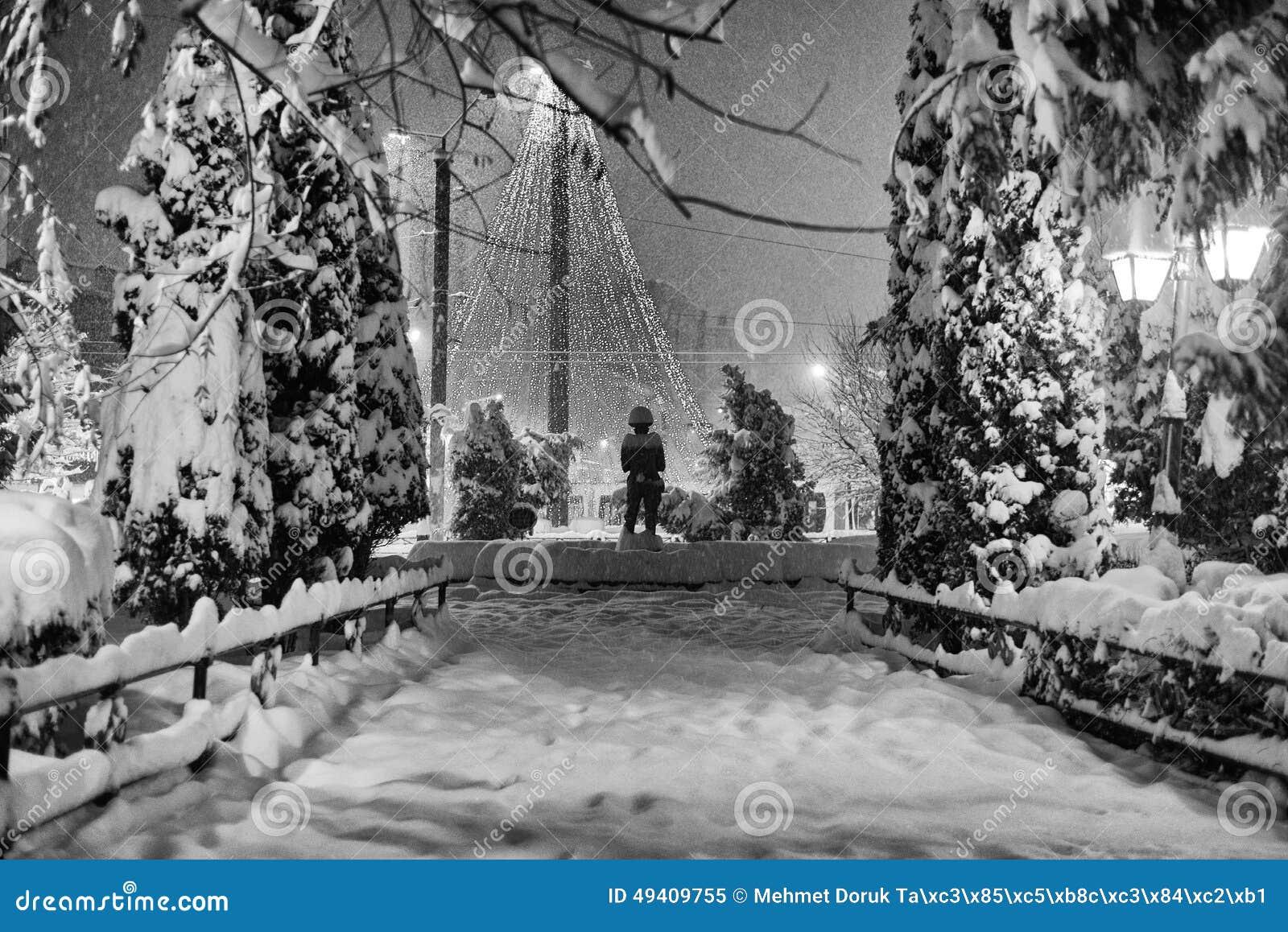 Download Nachtszene an einem Park stockbild. Bild von leben, abend - 49409755