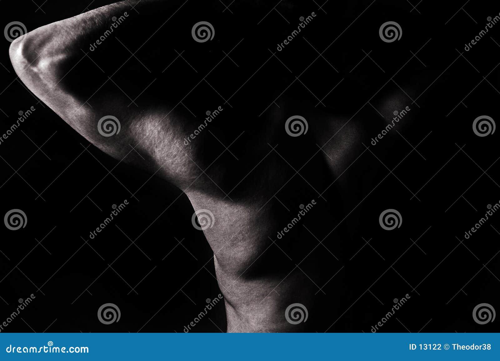 Download Nackter Mann stockfoto. Bild von attraktiv, nude, haut, glatt - 13122